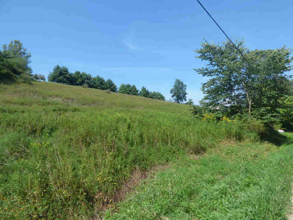What a great find. A 2.48 acre lot on Kinberland road in Rural Retreat. Build your dream home on the property then sit back and relax and enjoy the country views and quiet evenings. This property is close to Rural Retreat Lake, interstate 81 and just minutes from shopping, medical and schools.