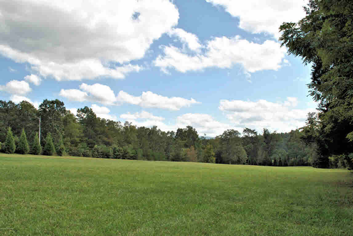 Build your dream home on this gorgeous 7.650 Acre lot in Hickory Knob Subdivision. Partially cleared and partially wooded, this lot has views of the mountains and has been perked. Conveniently located just minutes to I-81 and 20 minutes to Roanoke or Blacksburg & Virginia Tech. Come find your little piece of heaven!