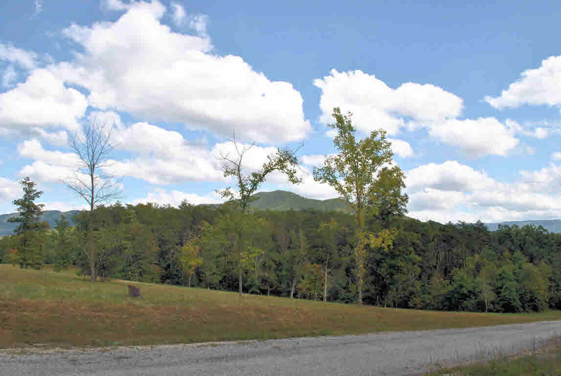 Build your dream home on this gorgeous 5.379 Acre lot in Hickory Knob Subdivision. This lot has views of the mountains and has been perked. Conveniently located just minutes to I-81 and 20 minutes to Roanoke or Blacksburg & Virginia Tech. Come find your little piece of heaven!