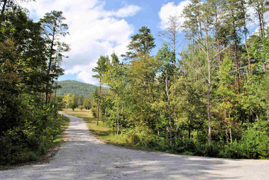 Build your dream home on this gorgeous 7.468 Acre lot in Hickory Knob Subdivision that is located on a cul-de-sac. This lot has been perked and is conveniently located just minutes to I-81 and 20 minutes to Roanoke or Blacksburg & Virginia Tech. Come find your little piece of heaven!