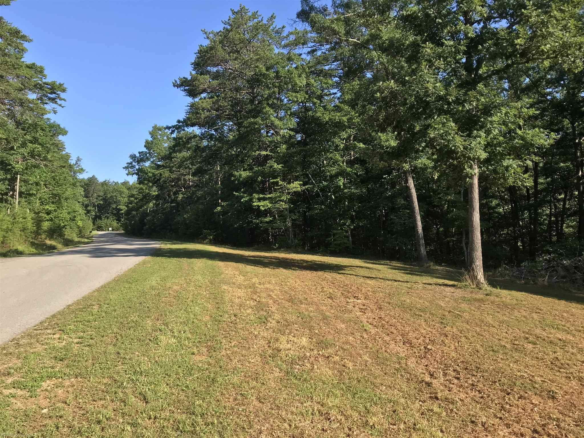 Very nice lot in The Ridges subdivision, with both cleared and wooded acreage. Lot is just shy of 3.5ac, has been cleared for a building site, and offers tremendous mountain views. Perfectly situated between both Roanoke and the New River Valley, with easy access to both areas. Build your dream home in one of Montgomery County's most exclusive neighborhoods, The Ridges. Property is set up for private well and septic, see Attached Documents for suggested location.