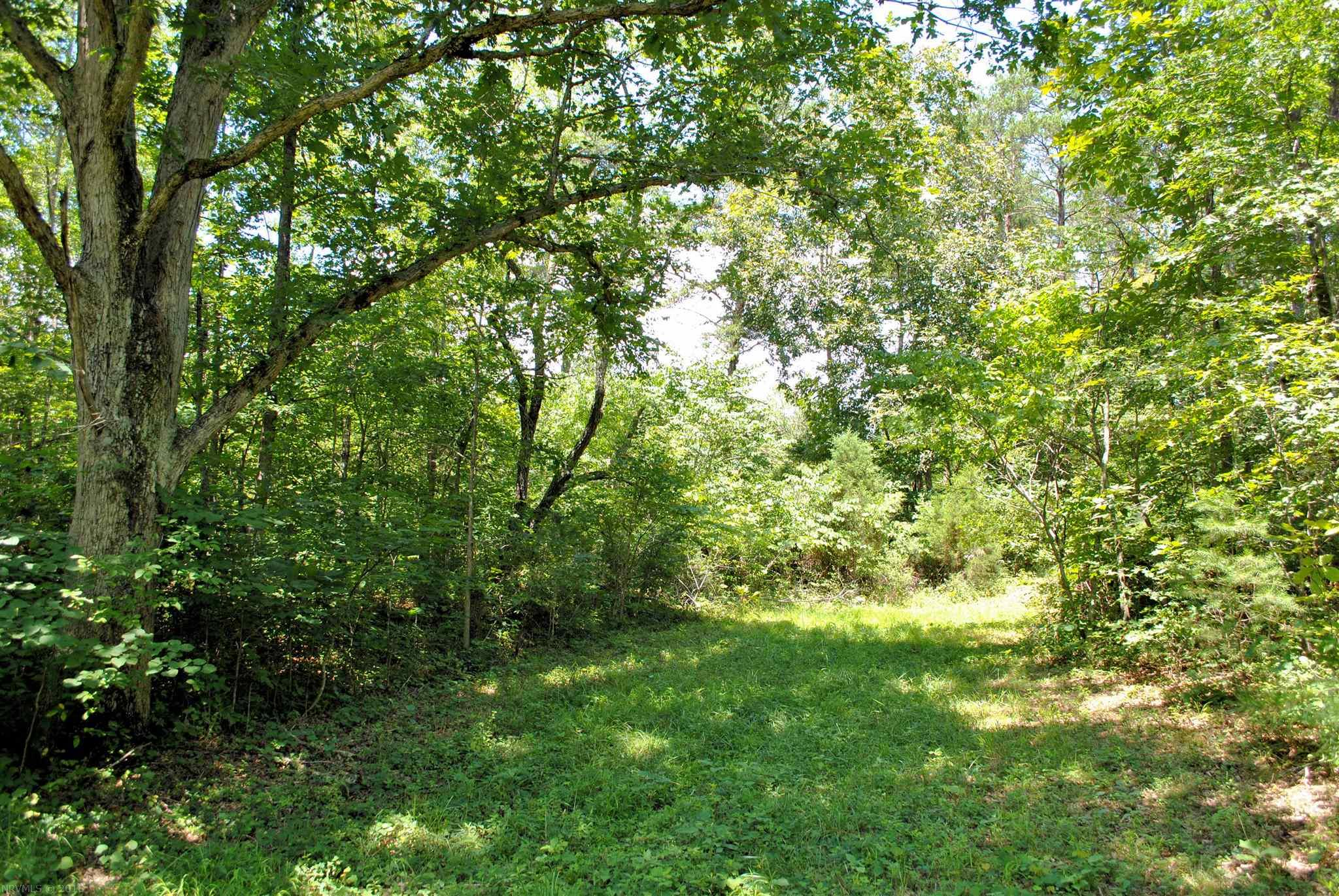 Build your dream home on this gorgeous, wooded 2.565 acre lot in Hickory Knob Subdivision.  The lot has been perked already for a septic system and is ready to be built on.  Underground utilities.  Conveniently located just minutes to I-81 and 20 minutes to Roanoke or Blacksburg & Virginia Tech. Come find your little piece of heaven!