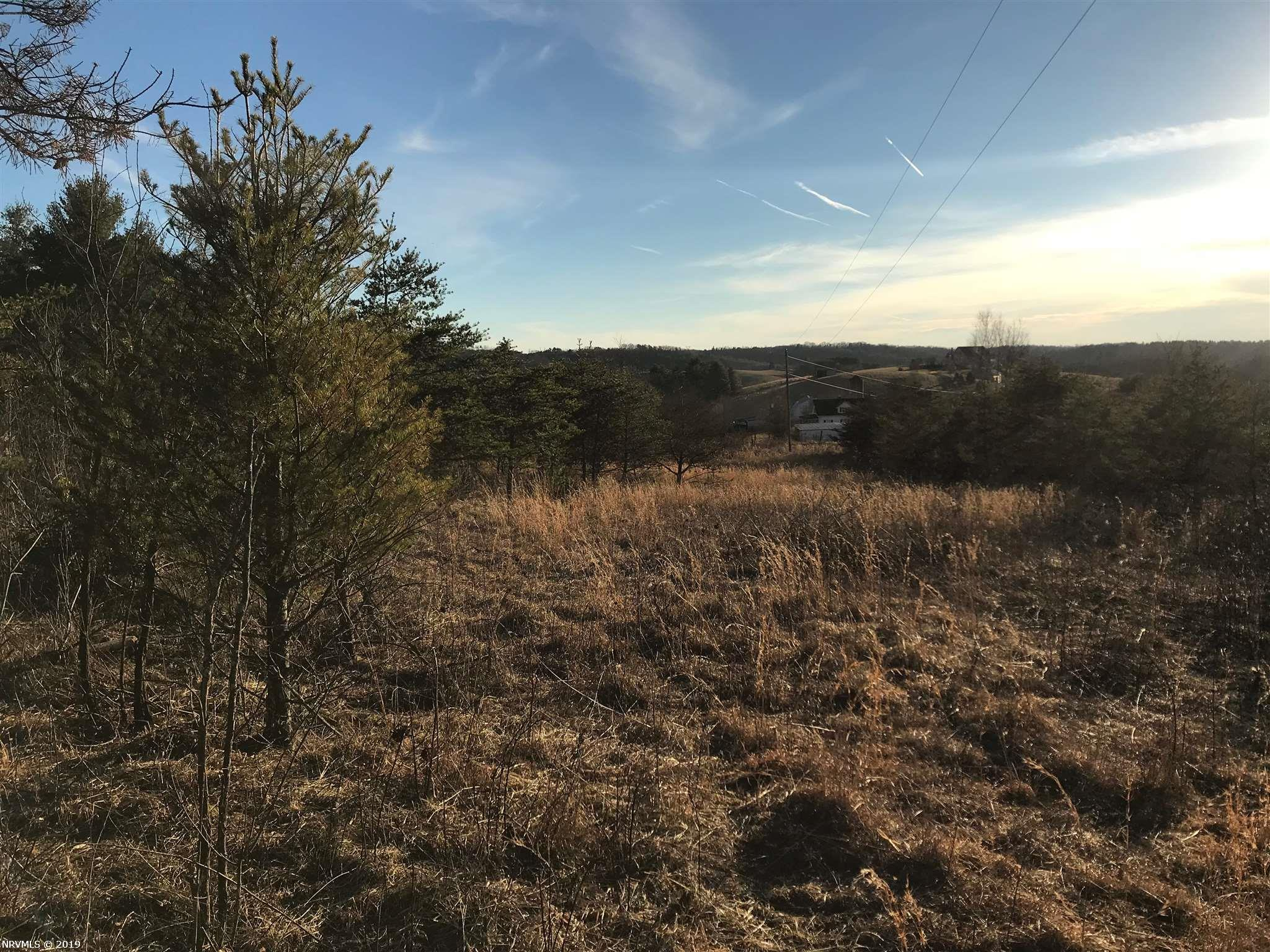 Enjoy the beautiful sunsets from atop the ridge on this 39 acre property.  Originally farmland and later planted with Christmas trees this property offers ridge views, open area as well as wooded land.  A spring head begins in the valley and meets with another stream.  Pines were tipped this past fall.  With some imagination the possibilities with this land are unlimited.  Property offers building sites, hunting and recreational opportunities.   The opportunity exist to have road frontage on both Indian Valley Post Office Rd as well as Windy Ridge Rd.  An additional 31 acres can also be purchased adjacent to the 39 acre.  Property does have an older well maintained cemetery on premises.