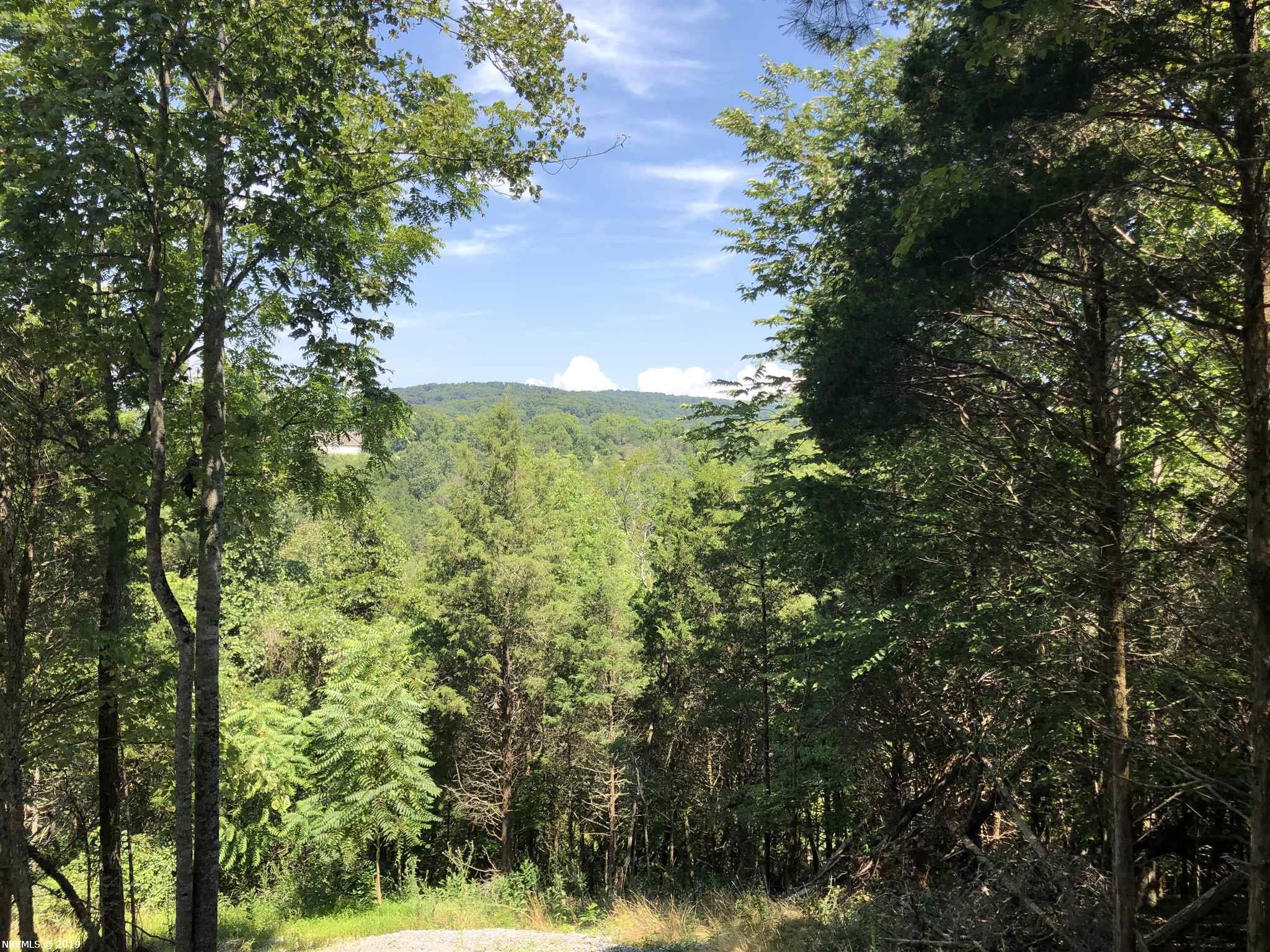 7.36 Acres of Wooded Land. Just a few miles From Christiansburg Zoned A-1 which Allows Mobile Homes. Home or Cabin Site with Views. Property is in the Christiansburg School System. MOTIVATED SELLER!!