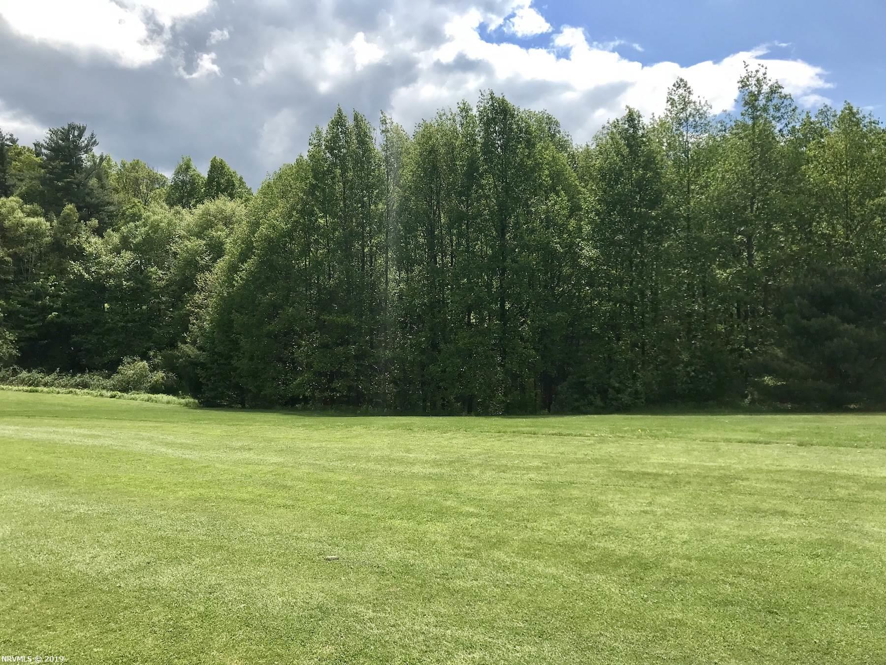 Great little lot slightly under an acre located in Fancy Gap VA. Property backs up to the #10 Fairway on the Skyland Lakes Golf Club. Lot is wooded, but would be a great spot for a home, just needs some clearing. Lot also has a small brook stream running through.