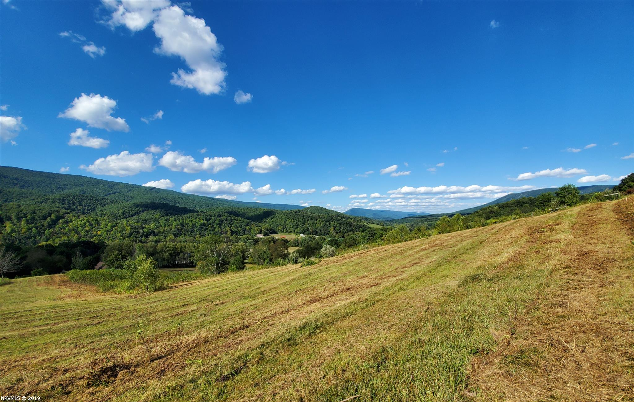 Breathtaking views in Narrows! 10 minutes away from US-460, this land offers a great opportunity to build a home with spectacular views in a convenient location. The perimeter of the property is enclosed with a fence, allowing for optimal use of the pasture.