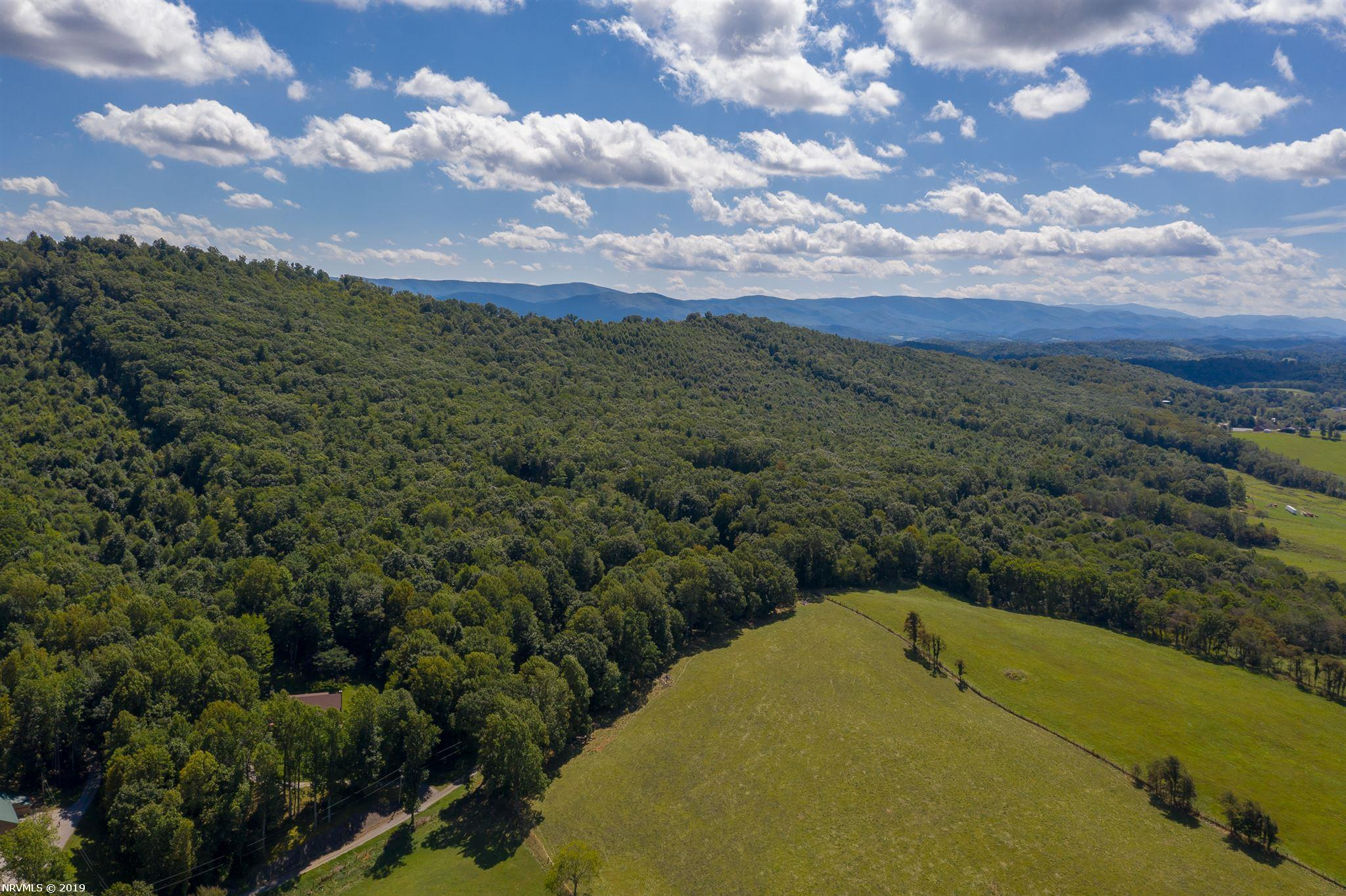 This beautiful lot is a blank canvas! Ideal for building the home of your dreams, this wooded land is secluded yet close to town. It will feel private without sacrificing amenities and getting involved in local events and activities. With easy access route 21 and both interstates, you are just a short drive away from Wytheville, Pulaski, Marion, and more. Schedule a showing today!