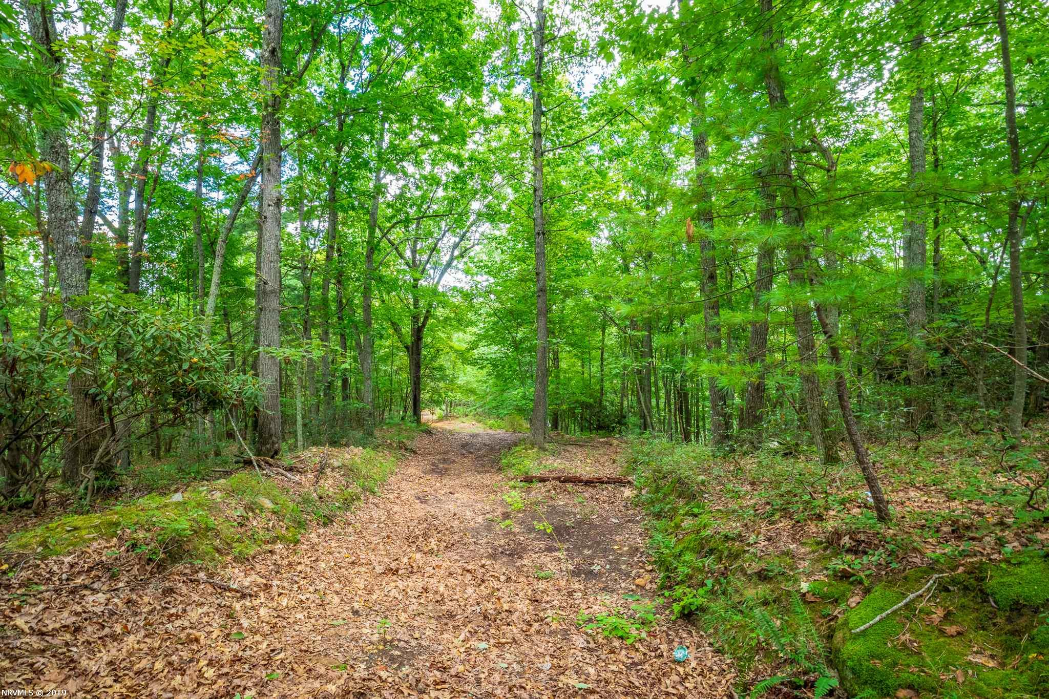 This is a great place to build your home. The property is wooded and can be accessed from either Whippoorwill Drive or Blackberry Drive. It is secluded but still within minutes from the town of Wytheville. Have to see to appreciate.