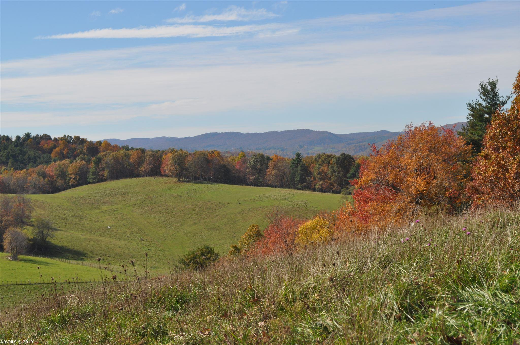 Amazing long range panoramic views, streams, springs, rolling hills, various ecosystems & directional slopes, woodland, pasture, fencing, old home, outbuildings, 1,730 ft of frontage on a paved state maintained road, convenient access to Floyd, Radford, Christiansburg, & Blacksburg, this property has it ALL!! This 54.8 acres in 3 parcels includes access on 2 roads, electricity on both ends of the property, multiple spring heads, old home with outbuildings, well, and septic in place (convey As-Is). The land itself has loads of potential for all sorts of possibilities, whether you prefer to build your dream home with long range mountain views in nearly every direction, vacation home to visit for relaxation & recreation, establish a vineyard, farm, homestead, orchard, whatever draws you to Floyd County with our history, clean air and water, vibrant community, natural beauty and nutrient dense foods, you can create your own unique space here!! Appointment required, don't delay!