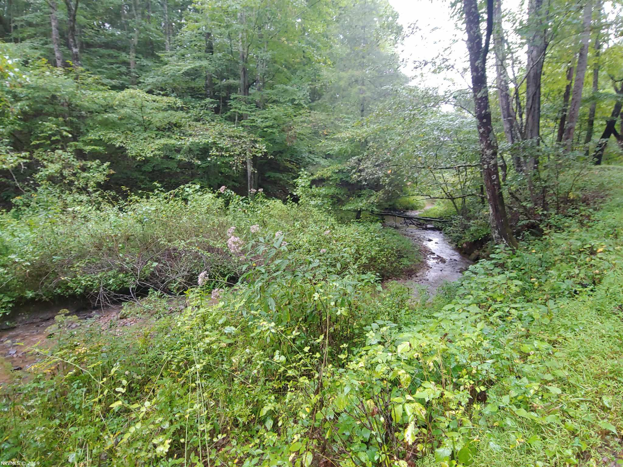 Possible building site with gorgeous views! Has a small branch and apple trees.  Would make a great hunting property as well due to it's abundance of wildlife. A national forest with horse trails is only 2-3 miles away.
