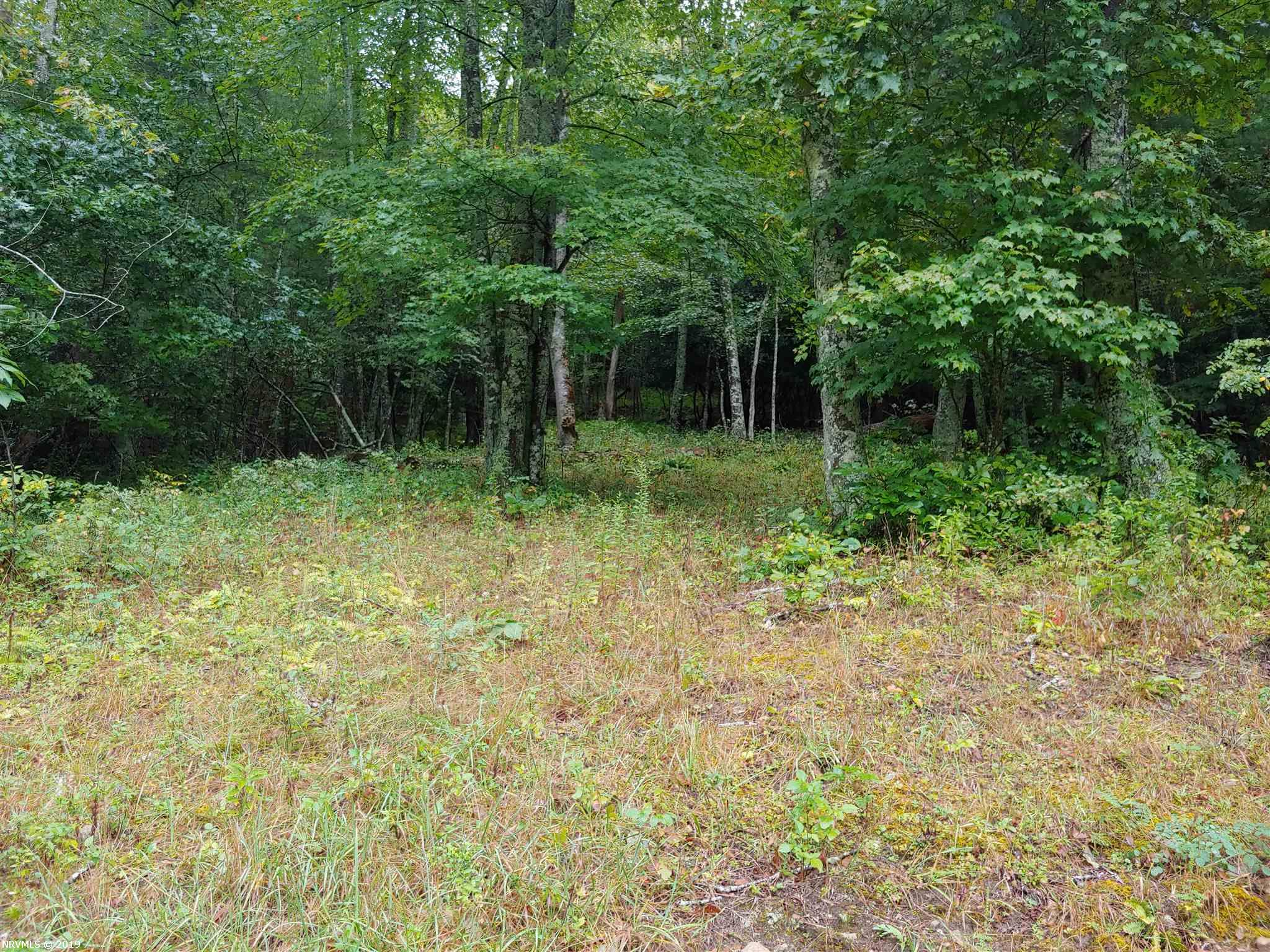Nice building site in a very secluded area. Features long range views and a spring! Ideal for recreational uses such as hunting, hiking and ATV riding. Home to a variety of wildlife.