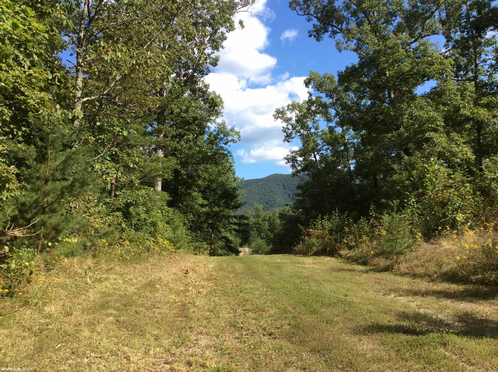 Live, play, hunt, hike your choice and much more on this private 34 acres. Great access road already in place. Enjoy owning that get away place just a few minutes off I-81 Ironto exit short drive to Salem, Roanoke, Christiansburg, Blacksburg. Build your dream home and live where you play.