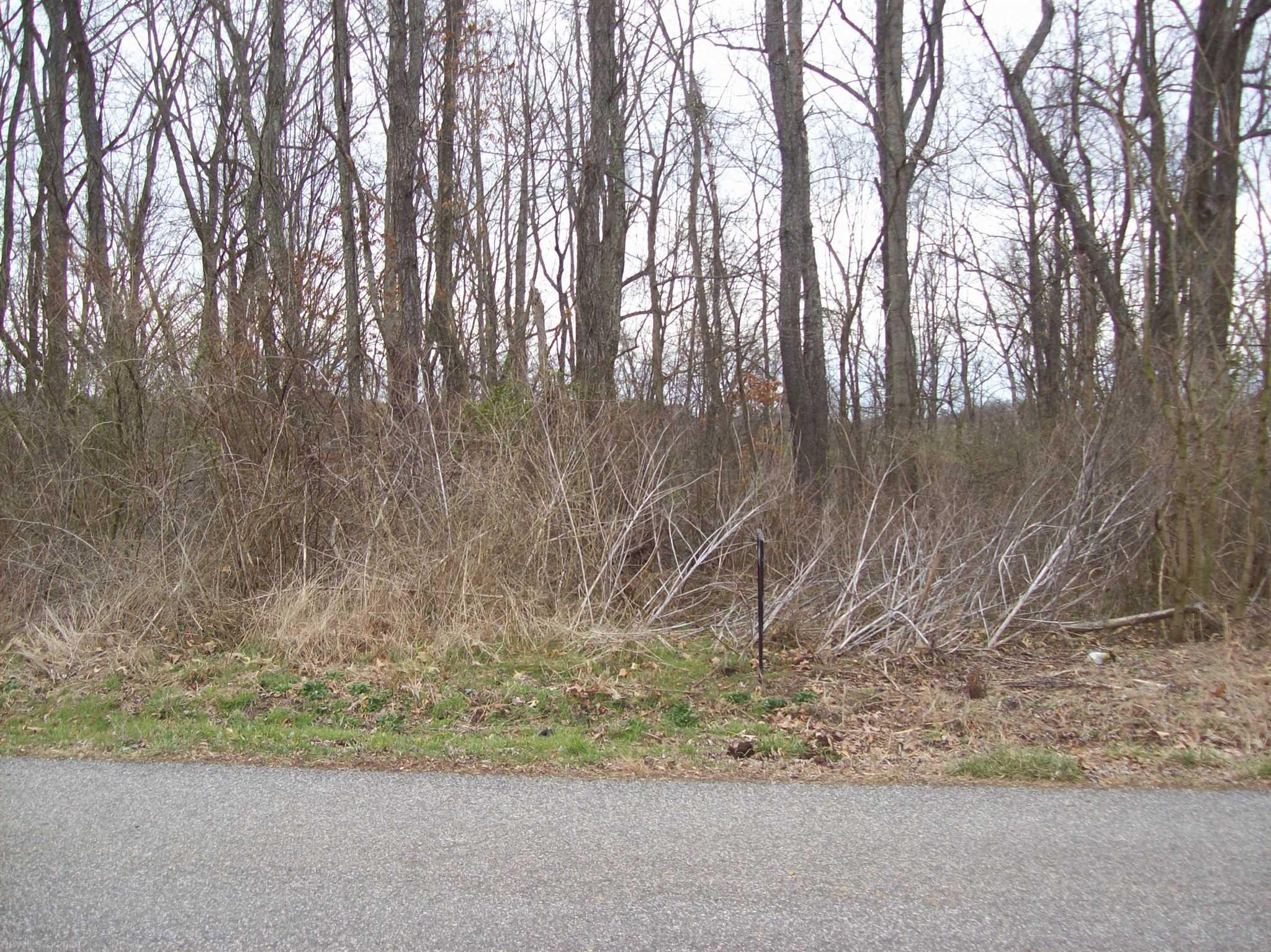 Looking for a lot to build on in Montgomery county this one acre lot on Easy St would be great for your new home and it only minutes from shopping, restaurant, I-81 and the schools.