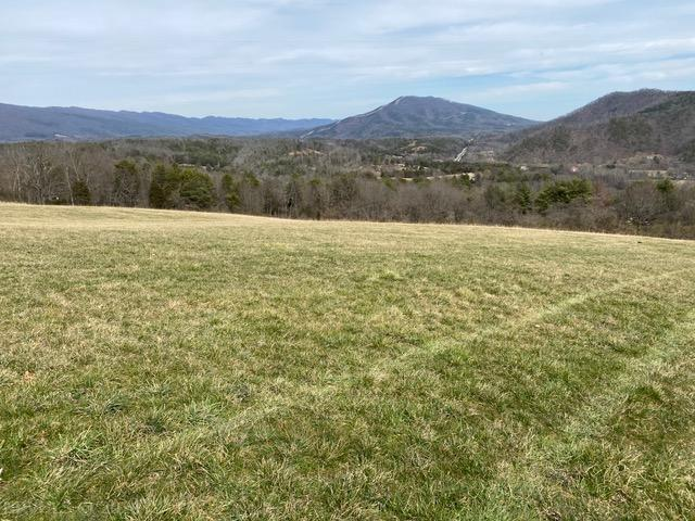 If you've been looking for a parcel of land with a gorgeous view this is IT!  Among the other amenities include abundant wildlife, privacy, plenty of elbow room and numerous sites on which to place your house.  Convenient to I-81, Salem and Blacksburg areas.  Restrictions and road maintenance agreements apply.