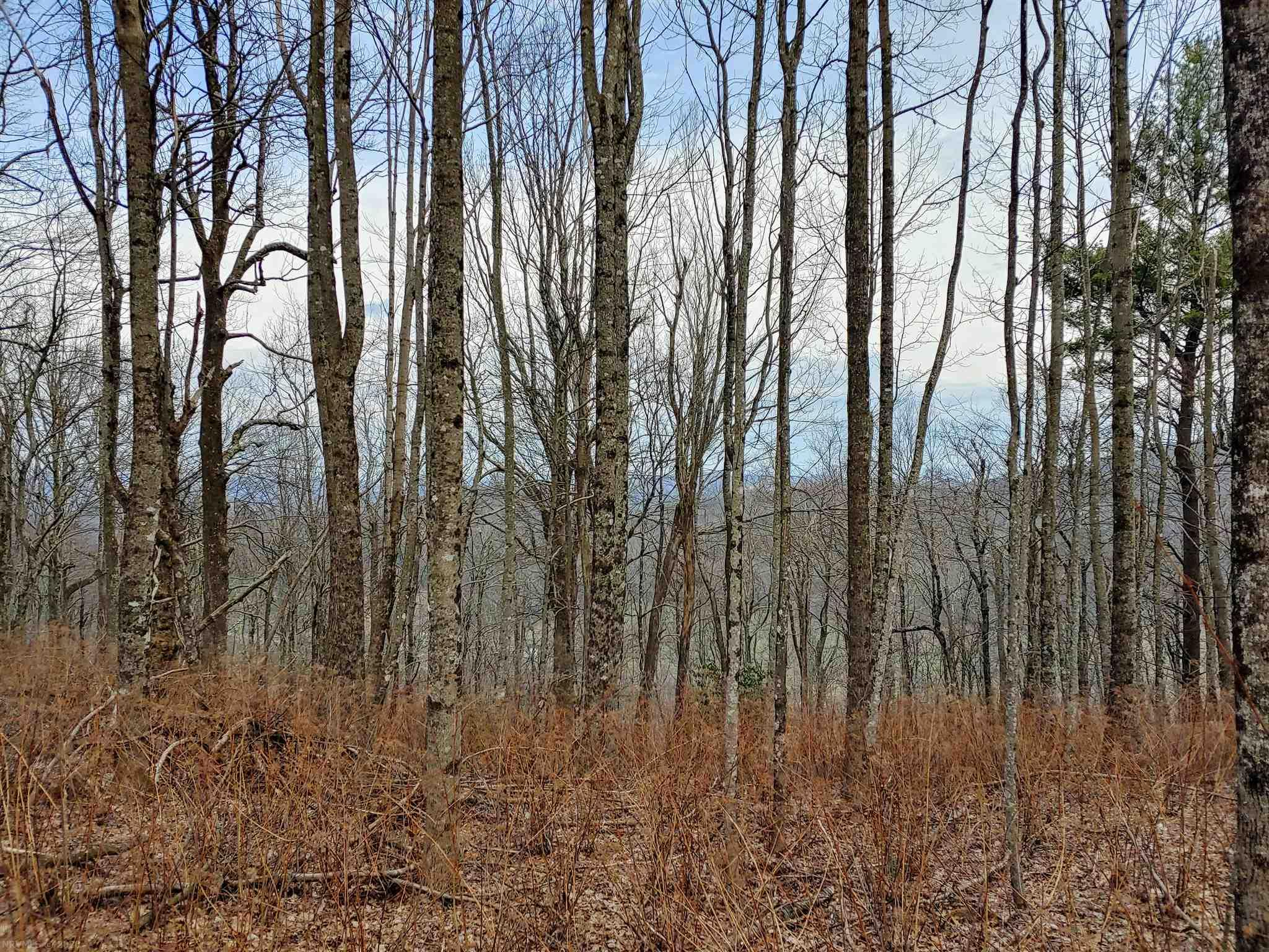 This 1.49 wooded acre lot offers potential for breathtaking views of the Blue Ridge Mountains with elevations  of 3,300 feet.  This lot provides a secluded feel and clearing potential for a family home.  If you are considering a getaway property take a look at this potential building spot.  Property does have covenants and restrictions.