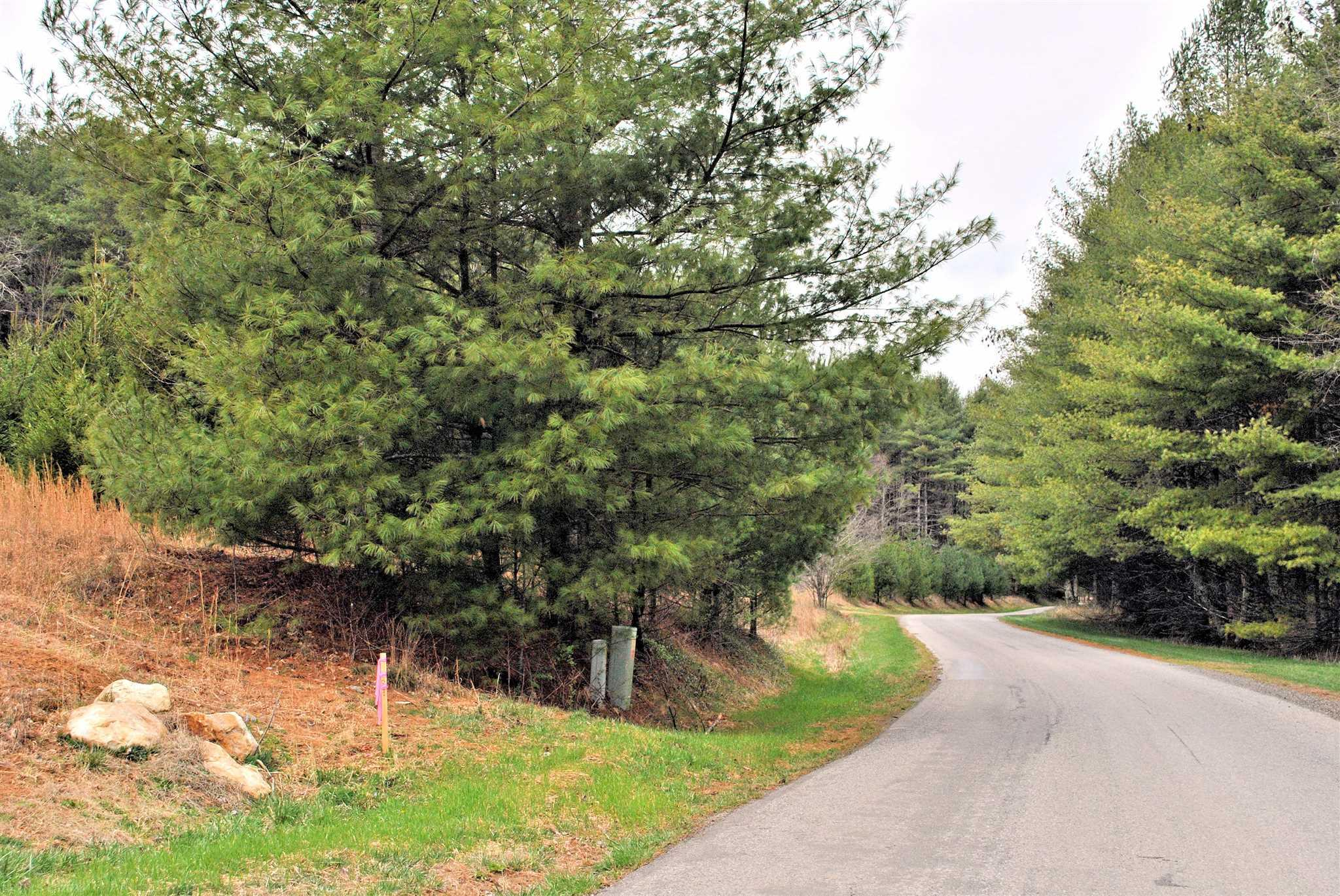 Over 7+ acres in Floyd County with open land, mature hardwood trees and planted spruce trees has many options and building sites.  Long frontage on a paved state maintained road.