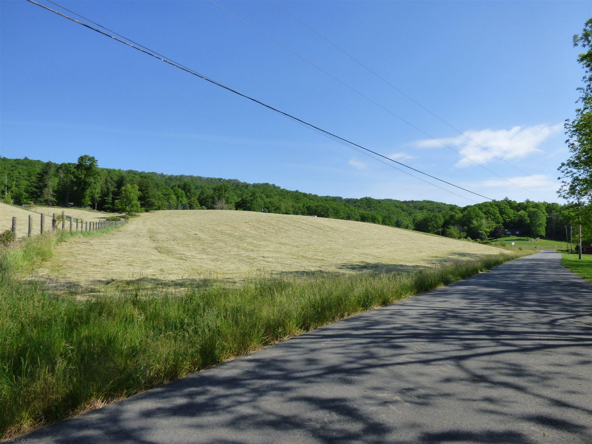 Location, location, 15 acres joining National Forest in the beautiful Fairview section of Wythe County. Land is partially opened, great for horses, or recreational use. Home is in excellent condition, with additional building sites.