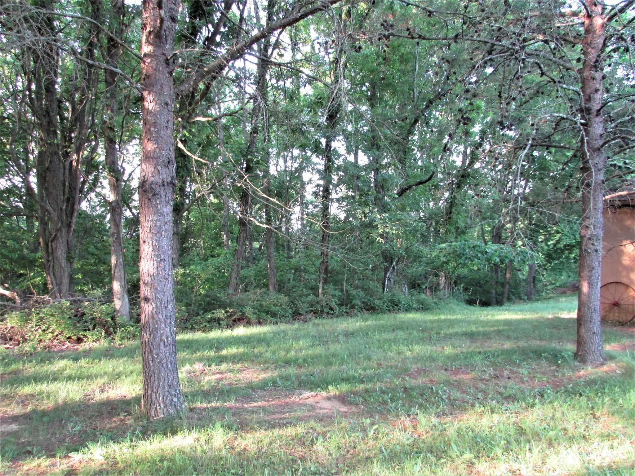 Wooded building lot with mountain views located in Mountain Top Subdivision. Conveniently located to NRV and Roanoke County. The lot has a gentle slope which offers more diverse building options and usable space for your new home.