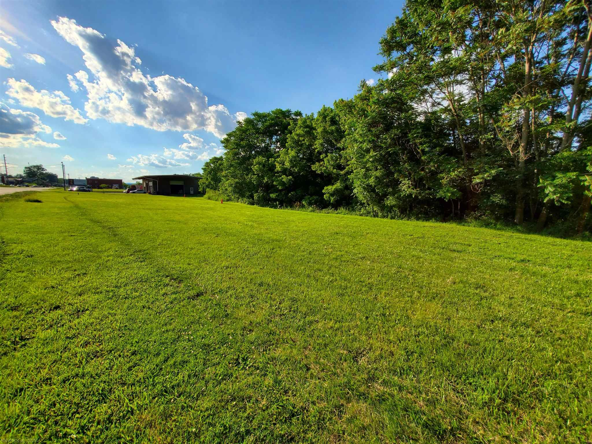 Commercial lot conveniently located in Radford. Being minutes from Radford University and Downtown Radford, this lot has great potential! Adjoining 0.5 acre lot also listed for $39,000.