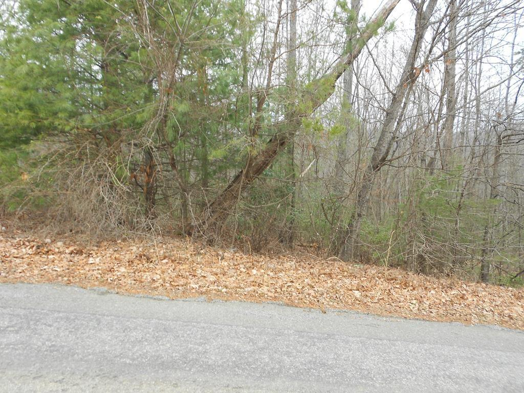 Owner may be willing to finance. Buildable wooded 1+/- Acres Land Lot on paved county road. No Restrictions. Manufactured homes OK. Mostly wooded, you can clear only the trees you want to clear and tuck your home/cabin under the canopy of the trees to be private and secluded. Suitable for all home styles including stick built, modular and doublewide. Lots of mature hard wood and pines. Only minutes from the Blue Ridge Parkway with private road for easy access off state maintained road. GREAT PRICE for buildable land. Can be purchased with additional acerage for a total of 42+/- acres for $115,000. See MLS