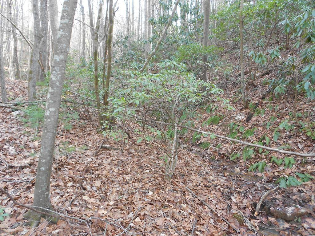 Owner may be willing to finance. Buildable wooded 7.7+/- Acres Land Lot on paved county road. No Restrictions. Manufactured homes OK. Mostly wooded, you can clear only the trees you want to clear and tuck your home/cabin under the canopy of the trees to be private and secluded. Suitable for all home styles including stick built, modular and doublewide. Lots of mature hard wood and pines. Only minutes from the Blue Ridge Parkway with private road for easy access off state maintained road. GREAT PRICE for buildable land. This lot has 5.3 usable acres and 1.79 acreage is the road. You can verify this by seeing the tax map number, showing the entire acreage is 10.94 SUBTRACT LOTS 1,2,3 from the total and you get the remaining. Can be purchased with additional acerage for a total of 42+/- acres for $115,000. See MLS