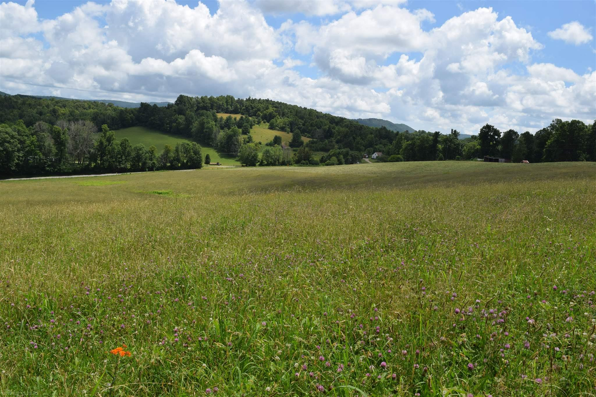 This picturesque land provides opportunities for a building site, farmland, and recreation/hunting.  The rolling hills and spring water on the property makes it suitable for livestock.  A barn is located on the property and is perfect for storing farm equipment, hay or recreational vehicles. The mountain views from the top of the property provides a perfect setting for a building site and is only minutes from the town of Floyd.  The wooded portion of this property is the perfect home for wildlife and provides ample opportunity for the avid hunter.  These 35 acres are a great farmland addition for the farmer or perfect for the family looking for the picture perfect property to build their home.  No restrictions on this property!