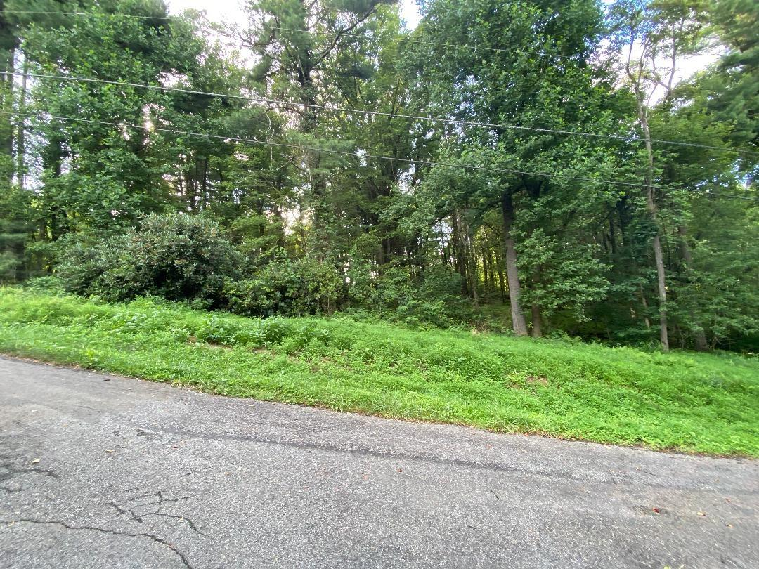 Have you ever wanted a beautiful buildable lot? Then look no further, located in Chalet High Subdivision many amenities including fishing ponds, tennis, clubhouse, community pool, ride your golf cart around the neighborhood and interact with the neighbors, family and friends. Slightly sloping wooded lot would be perfect for your next full time home or mountain get-a-way. R ight off the Blue Ridge Parkway, just minutes from restaurants, wineries, gas stations, Blue Ridge Music Center etc. One time water connection fee of $650. Vacant lot HOA is $202, With a home on the lot HOA is $434