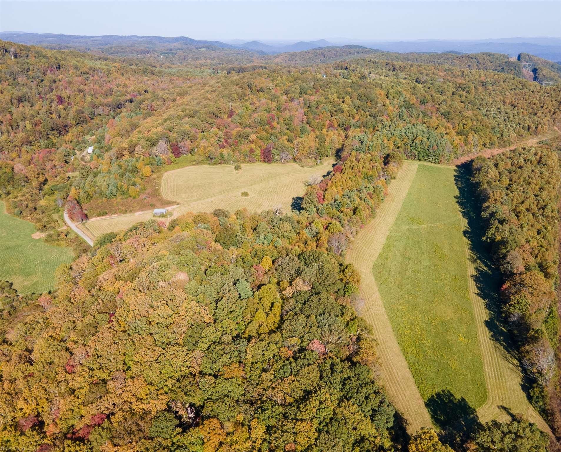 50 acres of open pastures and forest 2 minutes from the Blue Ridge Parkway. This beautiful property is tucked away on a quiet country road just 15 minutes from the town of Floyd.  Build your dream home or a secluded vacation retreat.  The previous owners had an off grid cabin.  There perennial herb garden with fruit trees where the cabin once stood.   This property has great potential for livestock or a horse farm with nearly 1500' of road frontage on a state maintained road and board fencing along the pasture at the entrance.  The large rolling pasture at the front of the property has a big restored barn and a spring fed drink box for livestock.  Both pastures have been in hay production for the past several years.