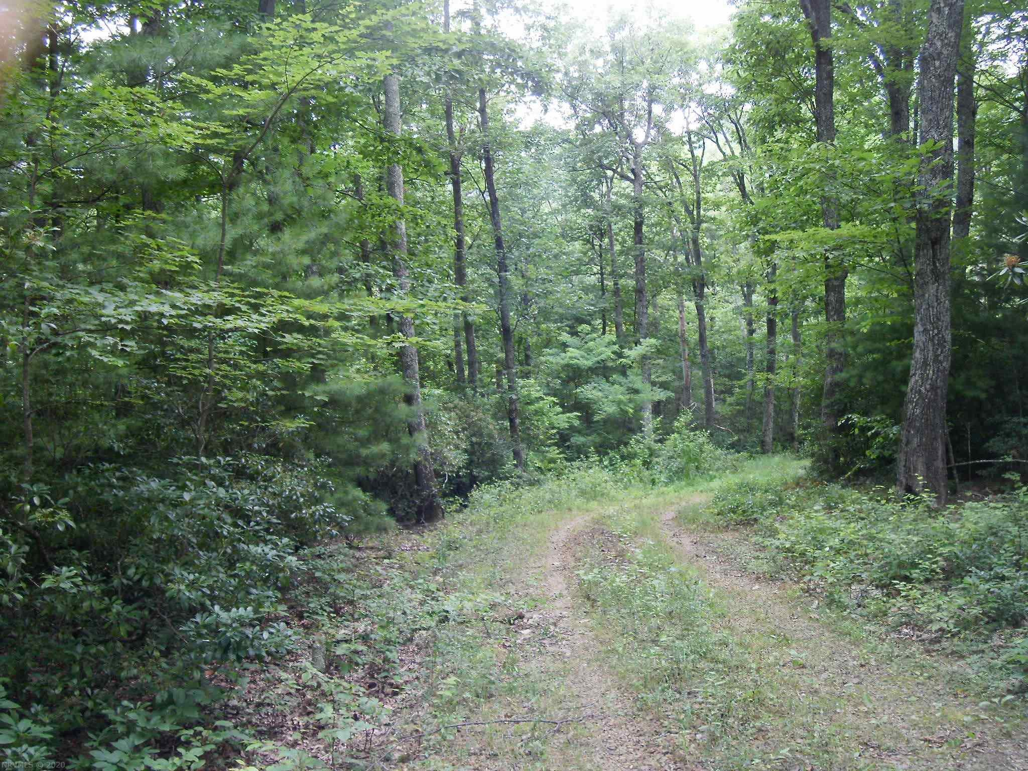 Enjoy privacy and country living close to town. Just 2 minutes from the Blue Ridge Parkway!  Less than 15 minutes to the town of Floyd.  2.41 acres of mostly level wooded land.  A driveway has already been installed and the parcel has been previously evaluated for septic and is clearly marked.  Beautiful mature hardwood trees, Rhododendrons and Mountain Laurels make this property a great choice for your home or rural Floyd retreat.