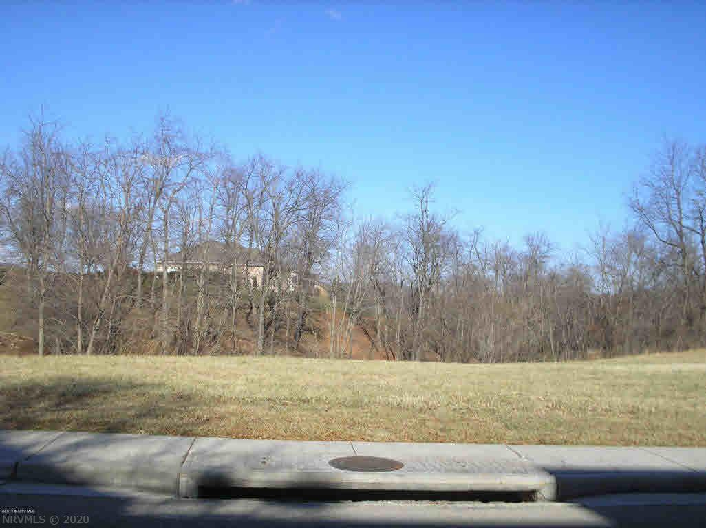 Build your dream home in beautiful Heron's Landing. Upscale subdivision offers incredible views of the mountains and river, Pete Dye VA Tech Golf Course just steps away, pool, community center, exercise room, curbing, sidewalks, street lighting, excellent restaurants nearby, 15 - 20 mins. to VA Tech, Radford Univ., & NRV Mall.
