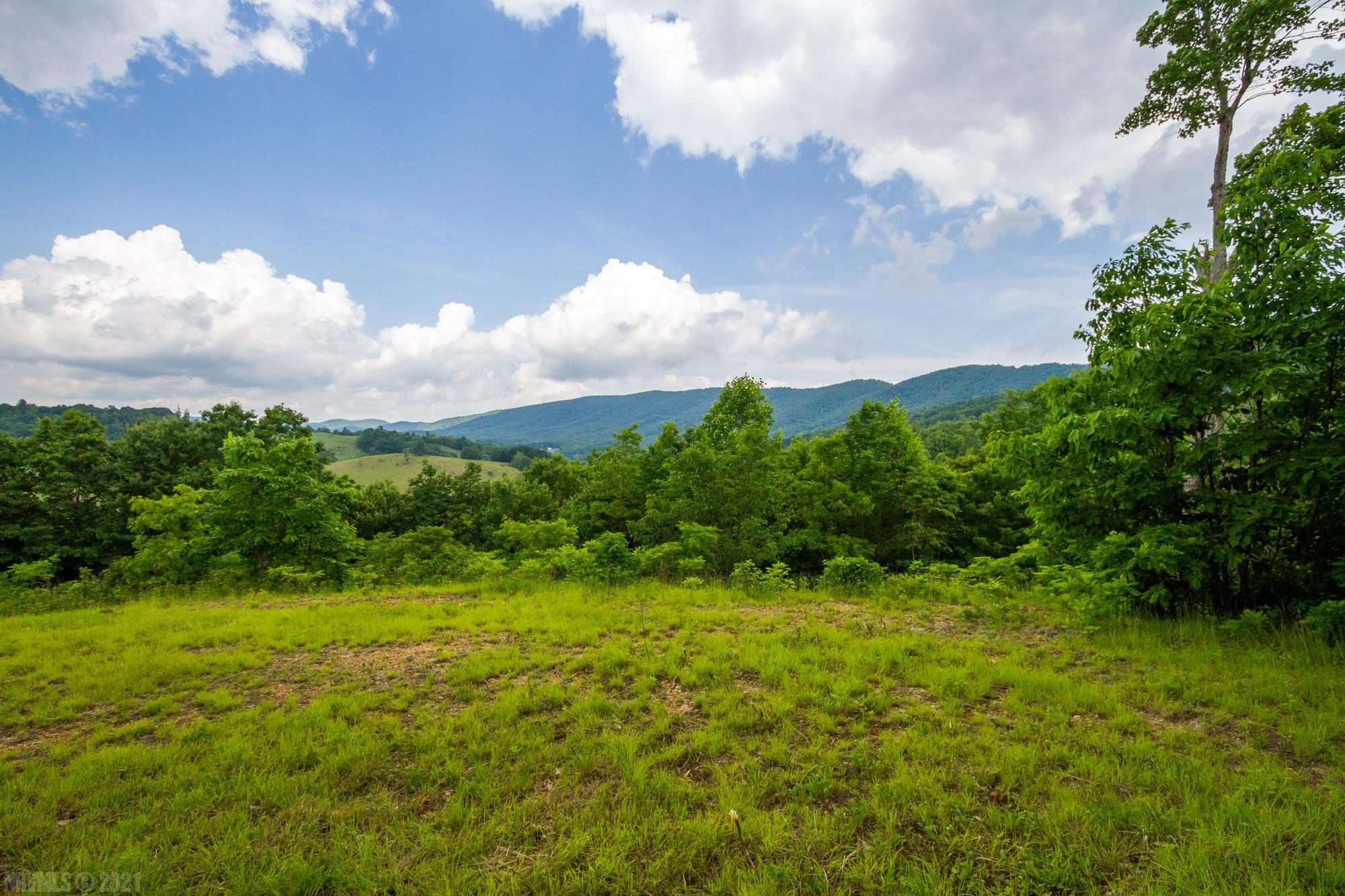 Beautiful mountain views of Elk Creek Valley located in Grayson County. This is one of two adjoining tracts. This lot has its own entrance and road leading up to a buildable home site with an outstanding view. A small tiny cabin is already partially fixed. Gentle stream runs through Lots 4 & 5. This property offers plenty of seclusion and acreage, even adjoining Jefferson National Forest. Very close to hiking trails and horse camps. Lot 5 has been perked for a 3 bedroom septic system. Lot 4 & 5 can be sold individually or together. Call for an appointment today!