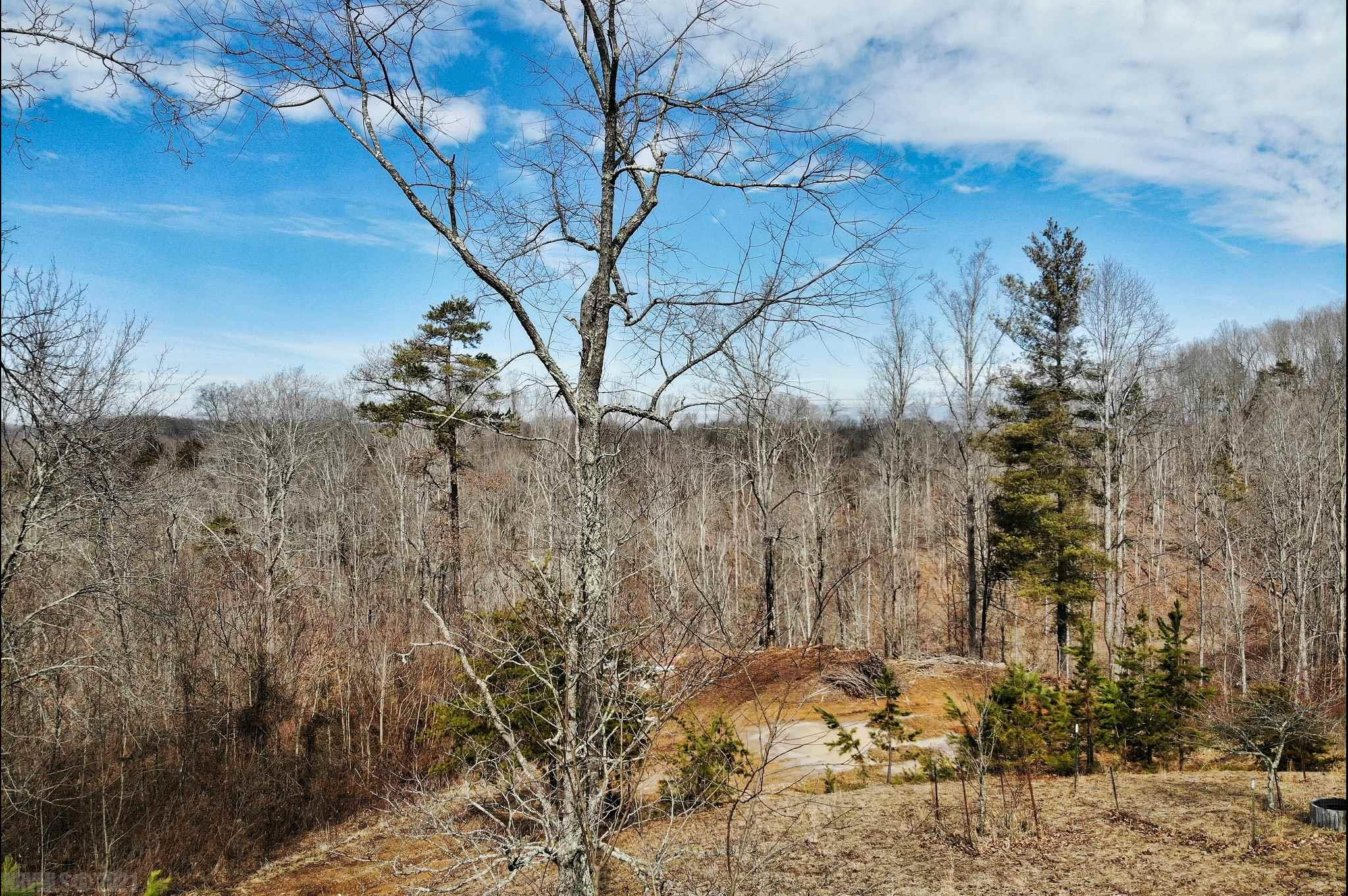 Large lot with mature trees convenient to Christiansburg, Floyd, and i 81.  Very nice setting with views.