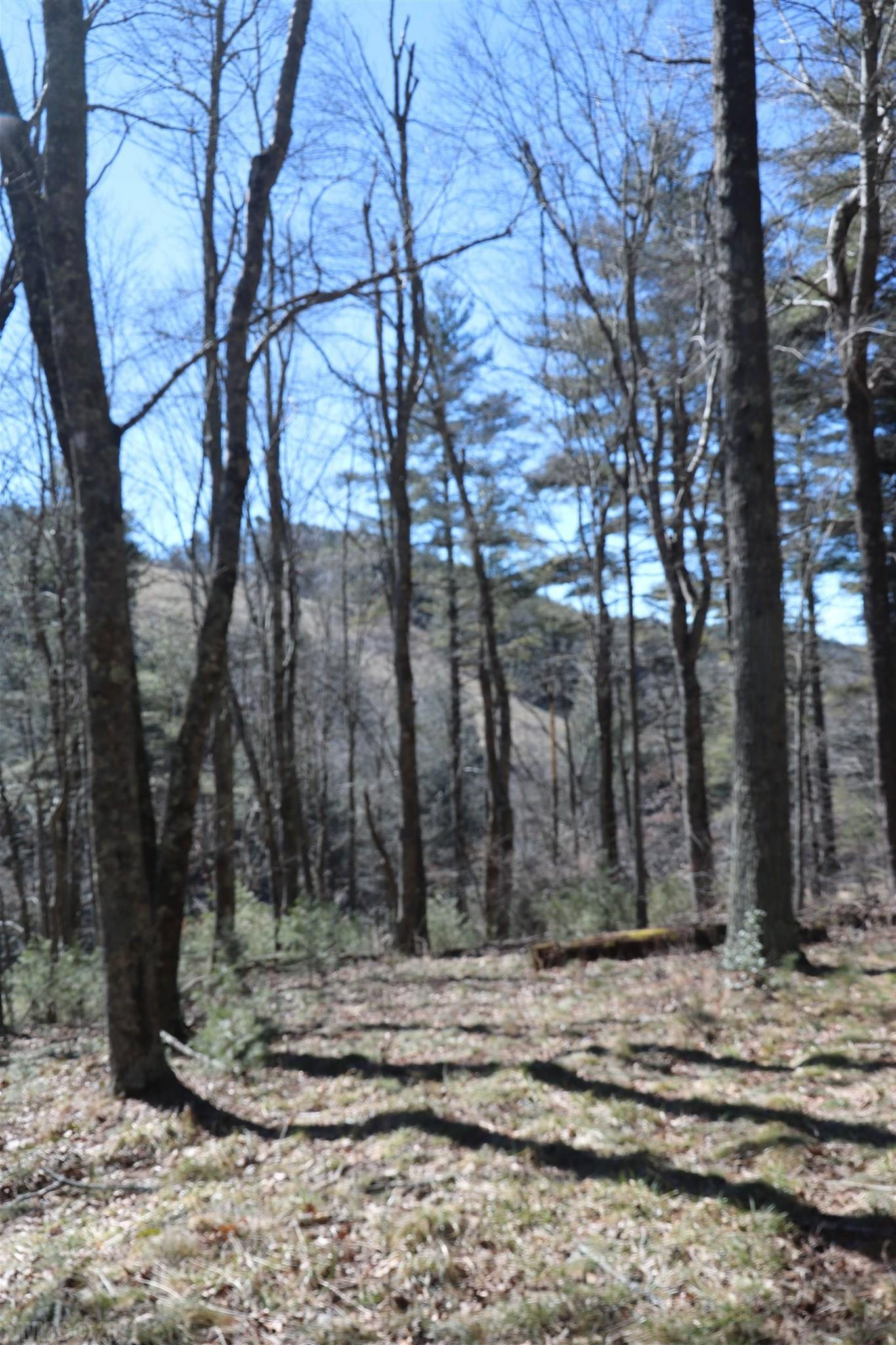 Wooded tract of land in beautiful Indian Valley.  Property has a homesite with a septic installed for a 2 bedroom home.  New high speed fiber optic service available.  Work remotely in more ways than one.
