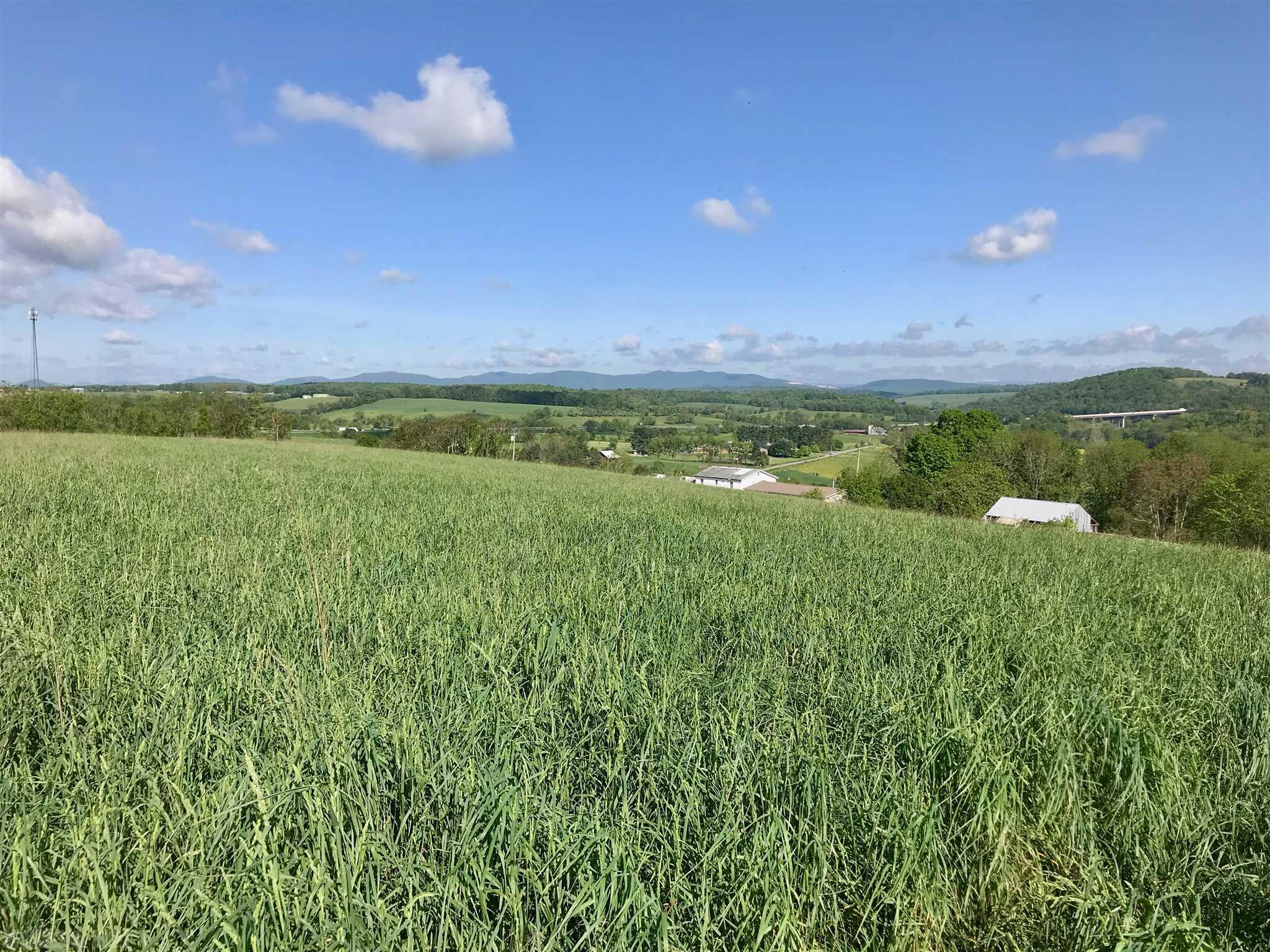 Establish your new farm on the top of this hill that provides views for miles. This blank-slate acreage is everything you have been looking for: lush, open pasture, long-range mountain views, close proximity to the interstate, the New River, the New River Trail, and all the other amenities that living in Wythe County provides. Locate your house at the peak and enjoy commanding, 360-degree views of your new property. There's plenty of room for your horses and other livestock. When the day is done, head down to the New River and the Trail for some hiking and fishing or simply sit back on your front porch and rock in your chair to the sounds of the country. The long road frontage also provides an opportunity to sub-divide the acreage to expand the housing or farming options available to the new owner. Take a look at the photos and schedule your appointment today.
