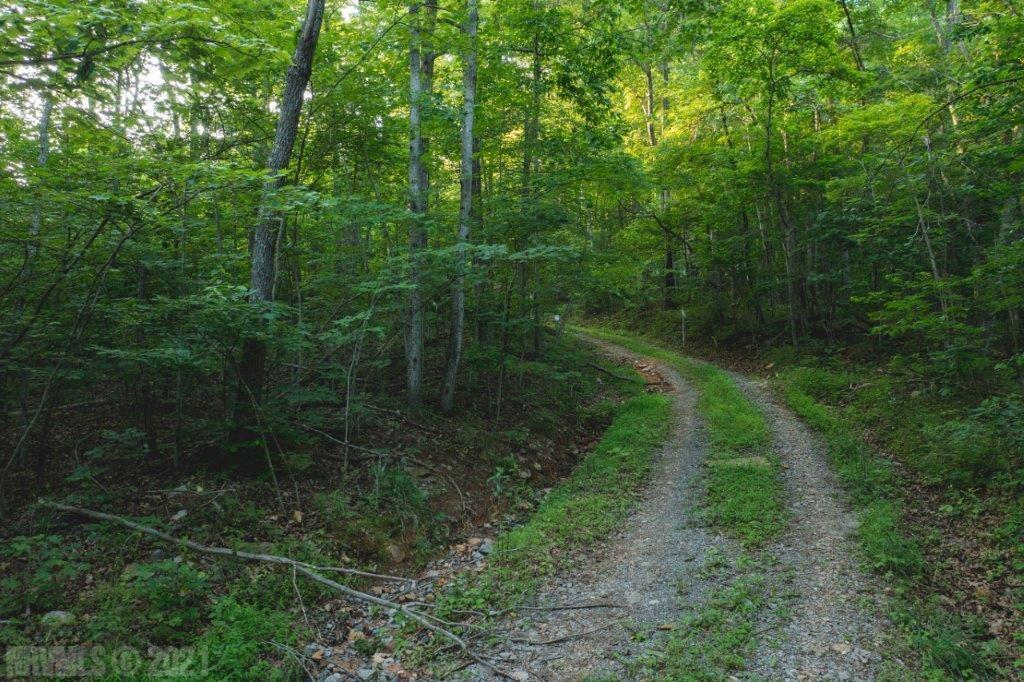 Mostly wooded recreational property! Private setting adjoining the Boy Scout property. Large acreage tract with abundant wildlife. Ideal for hunting, hiking, riding ATV's and more!