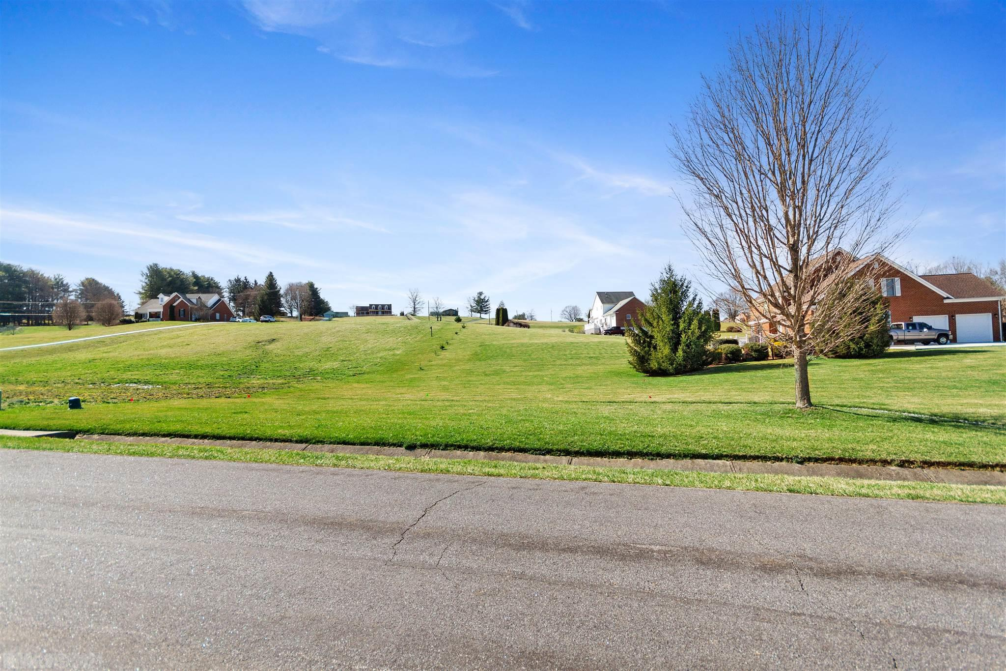 One the last lots left available in desirable Heritage Place in Christiansburg.  Great building site for your own custom-built home on 1.669 acres of land. This flat lot has great views and is ready for your dream home. Property at a price like this won't last long! Contact me today to get started.
