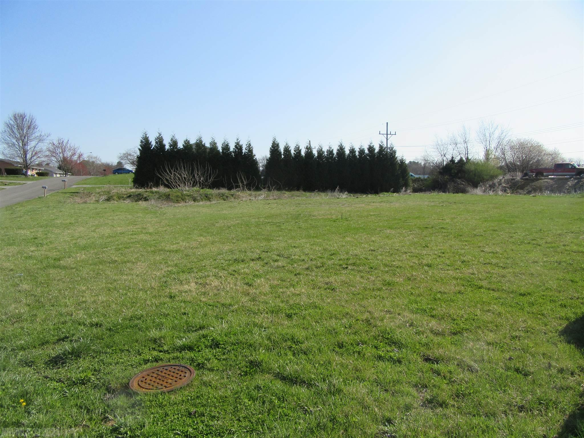 3 lots for one money $79,900, new survey ready to build on, level with water and sewer.  Zoned R-1 Residential
