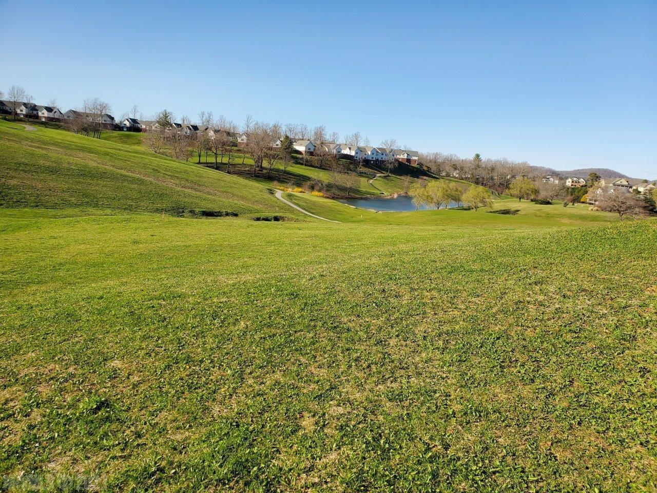 Owner Financing Available. Enjoy the beautiful view over the 18th hole at Auburn Hills Golf Club that this fabulous lot offers. Build your dream house and be a part of this great Auburn Hills development. Water and sewer available. Close to Blacksburg, Christiansburg, Radford and Carilion Medical. No HOA. Call today.