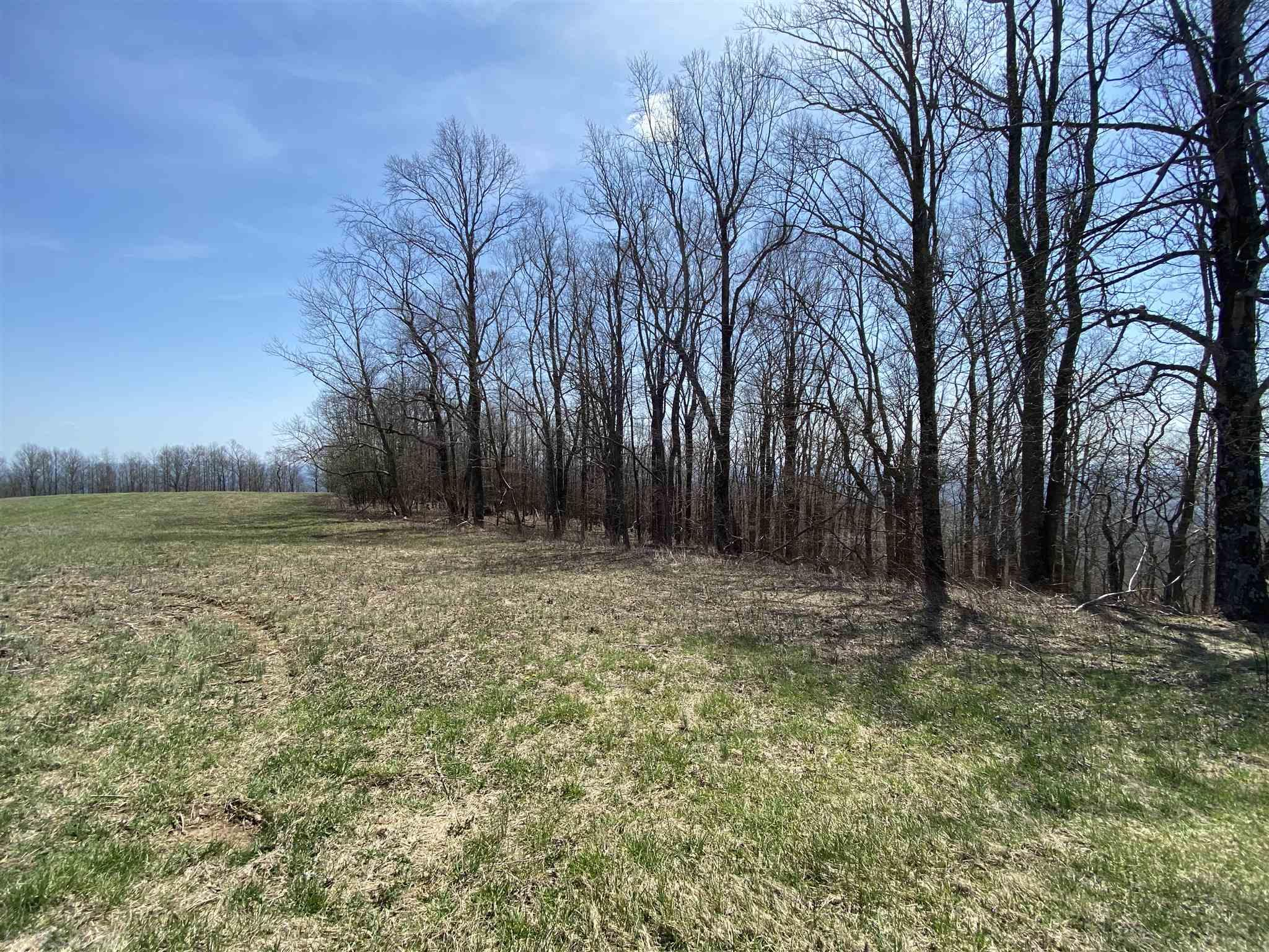 Here you have a lot that, if cleared, would have great Pidemont Views, Located in Elk Horn Acres, a quite development right off the Blue Ridge Parkway. At this price this lot will not last long, so jump on it today. Priced well below tax value.