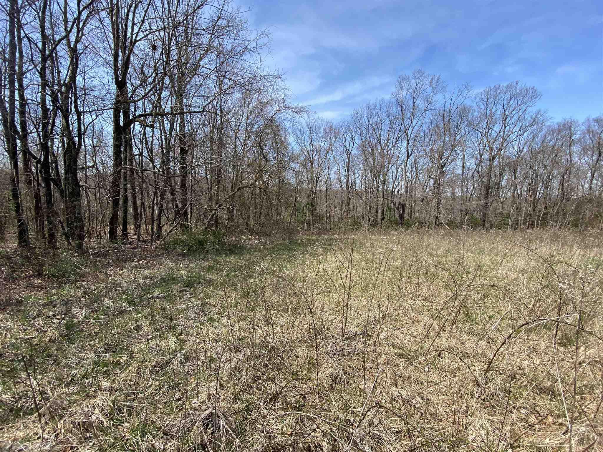 Nice 17.25+/-acre tract of land located in Elk Horn Acres. This land can be purchased in addition to MLS# 75738 & 77716. Nice build-able lot located right off of Rhododendron Rd with rolling/sloping woods in the back. Priced well below tax value for a quick sale.