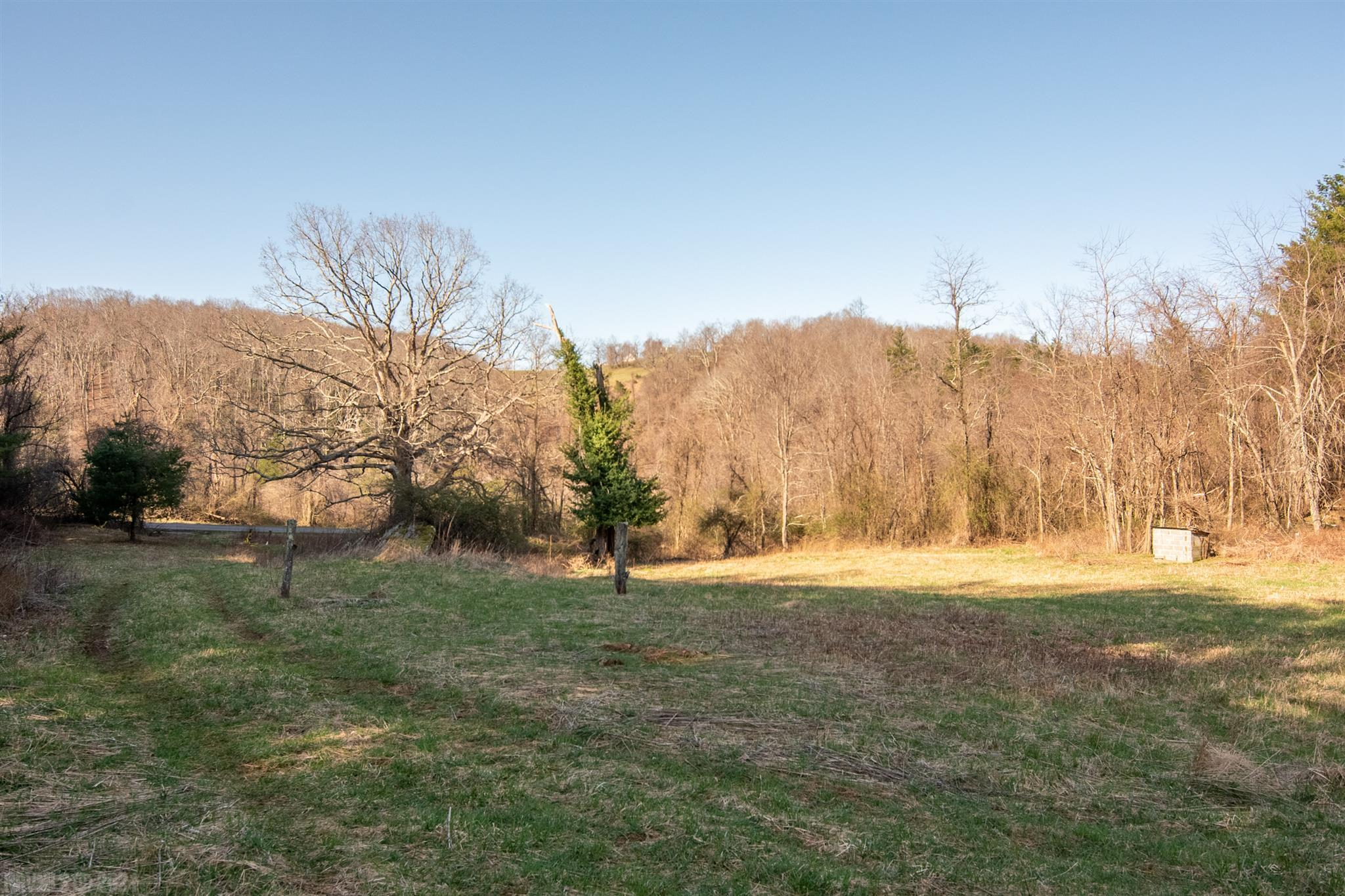 Beautiful 23 acre property with a mix of hardwoods, pines and open land. Property has 1800 +\- feet joining The Blue Ridge Parkway. Cleared house sight with a nearby spring on the property. The top of the ridge has potential for short range views. Great opportunity to own  land in Floyd county with seclusion and convenient to town of Floyd and Roanoke.