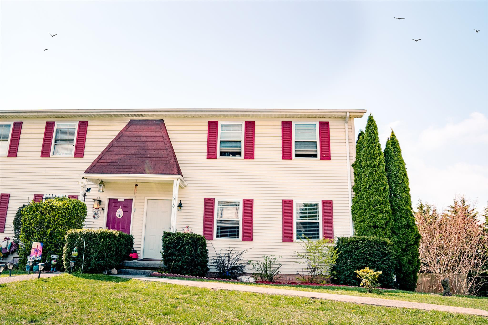 This market is in full swing and at this price and no HOA it will be sold fast. 3 Bedrooms and 2.5 Baths in the Heart of Christiansburg VA will get you all the Conveniences you are looking for. Updates include Flooring Paint Appliances Lighting Bathrooms New interior doors blinds & fencing. You will enjoy all the love and work put into this home.