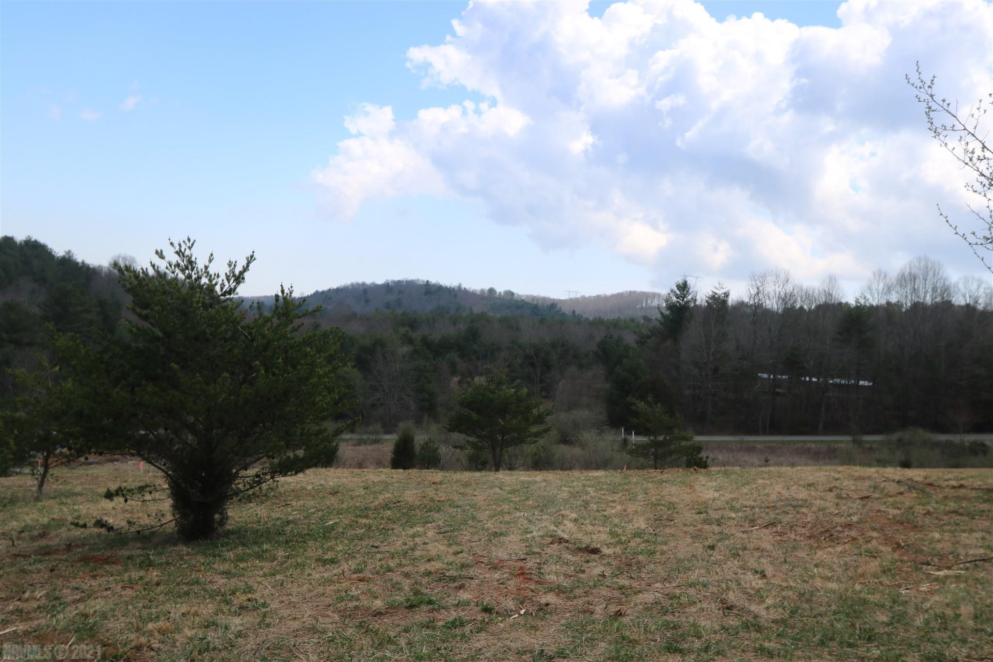 Homesite located in Willis, VA.  Property has been recently perked for a 3 to 4 bedroom home.  Land is gently sloping and mostly cleared with a small stream.  New residential drive already in stalled and ready for your new home construction. No restrictions.  New survey being completed.  High Speed fiber Optic internet service available.