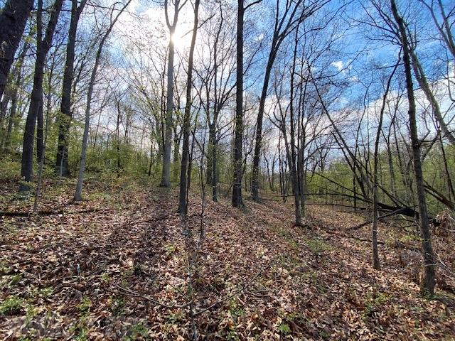 Here are Two Lots for YOU in the Heart of Christiansburg with 300 ft. of  Crab Creek Frontage.  Both Land Tracts are 1.97 and .60 Acres totaling 2.57 Acres.  Each Land Tract has Different Zoning which really expands YOUR Options.  This is slightly sloped.  The smaller lot (.60) is zoned Industrial 1, and the 1.97 Acre is zoned Ag. The Larger Lot can be customized for a single family residence and is just slightly sloped.  Right of Way is not a problem.  Manhole for possible sewer connection is at Robinhood Lane.  Sewer line runs on lower portion of property. Buyer to determine cost for potential water hook up and septic hook up.  You really cannot find this anywhere in the town.  Don't miss this opportunity.  Call to Schedule a private tour today!