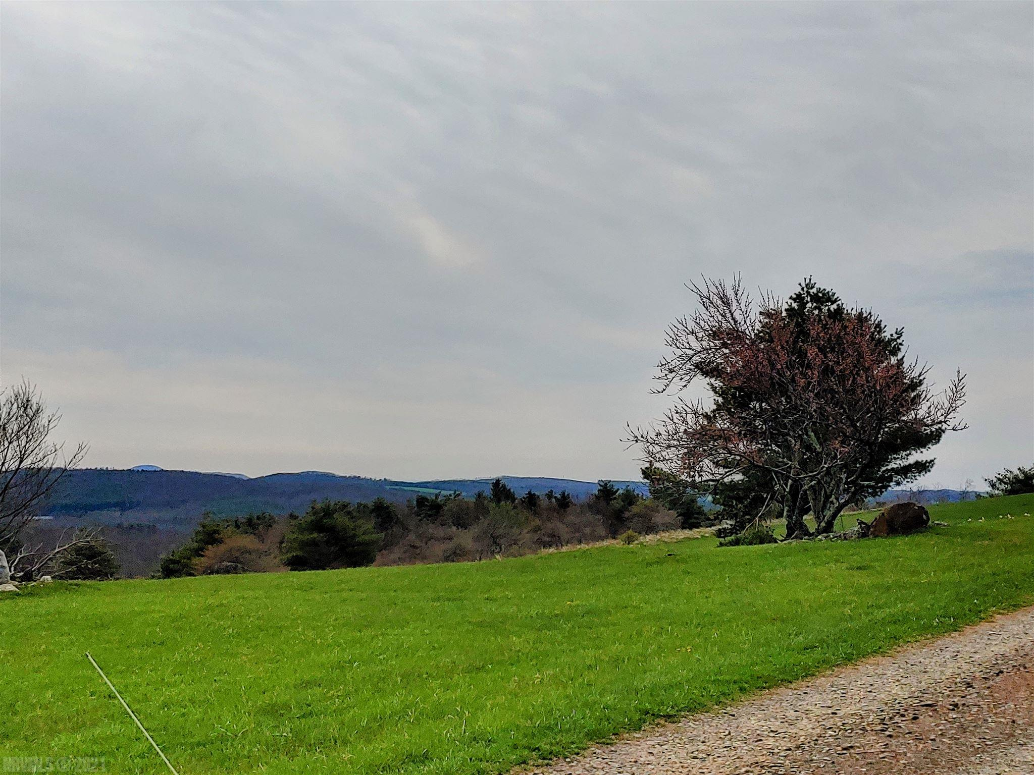 Enjoy the views from this ridge top property! Level 2.7 acre lot adjacent to the Blue Ridge Parkway. Just a few minutes to Hwy 58 and Chateau Morrisette Winery!