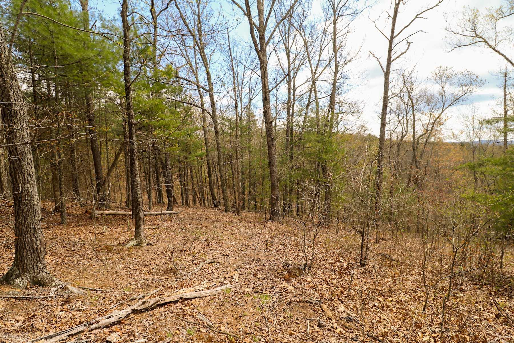 Beautiful wooded tract of land in Riner VA. This property has a driveway in place for access. Land is all wooded and would be great for recreational use. You could also clear a spot on the ridge and build your dream home with potential for a great view! Additional 24.16 acres available for purchase - 63.54 acres total for 219,500