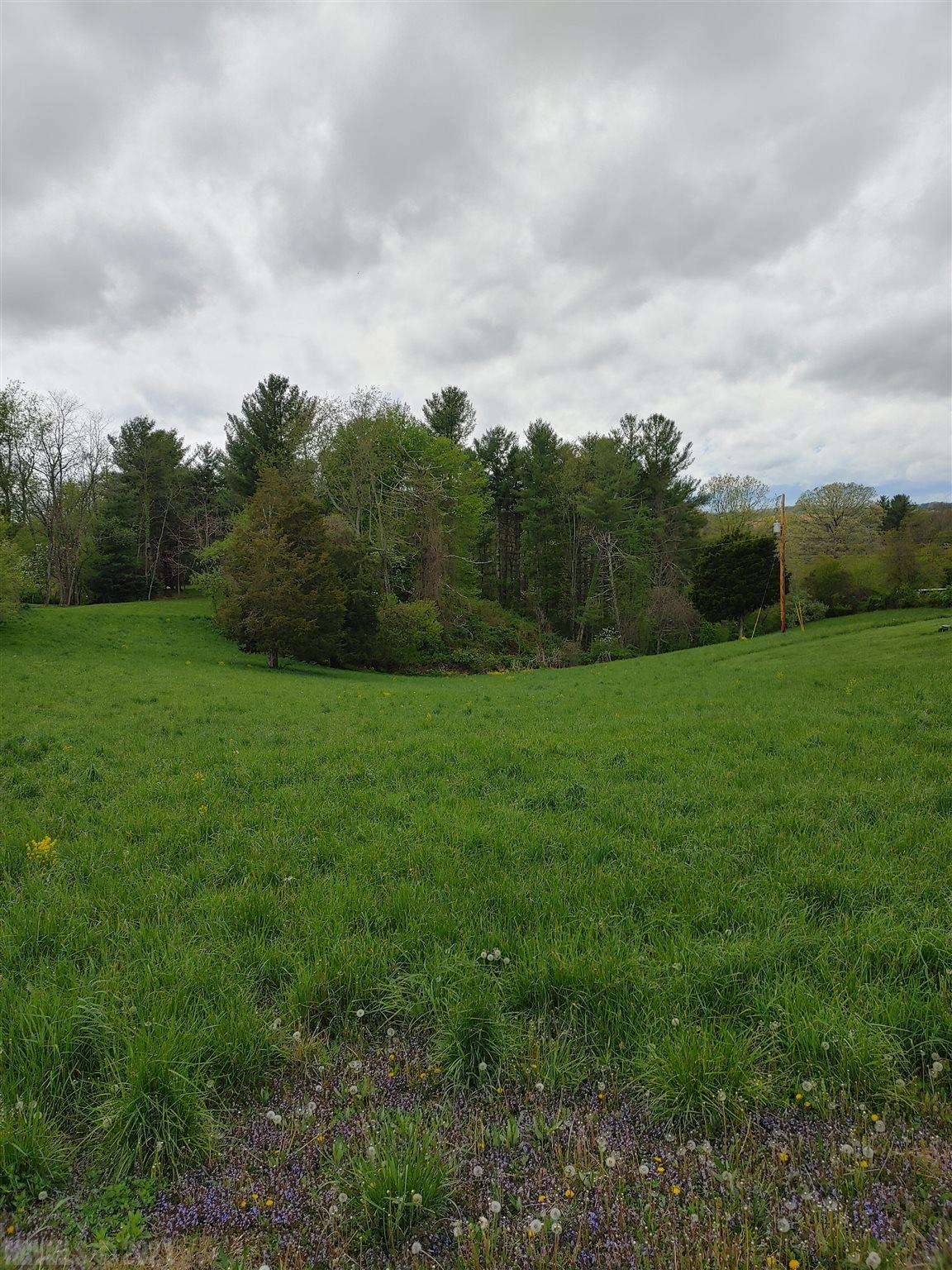 LOCATION, LOCATION, LOCATION if that is what you are looking for then this 4.69 Acre buildable lot is what you are looking. Right in the town of Hillsville. Located close to Carroll County Intermediate School. Land has views to where you feel like you are in the country, but with the location and convenience of living in town. Property is within walking distance of all of the town festivities like the cruise in car shows, the Farmers Market, the concerts that are given during the cruise-ins, and the safe Halloween trick or treat. Truly is a must see !!!