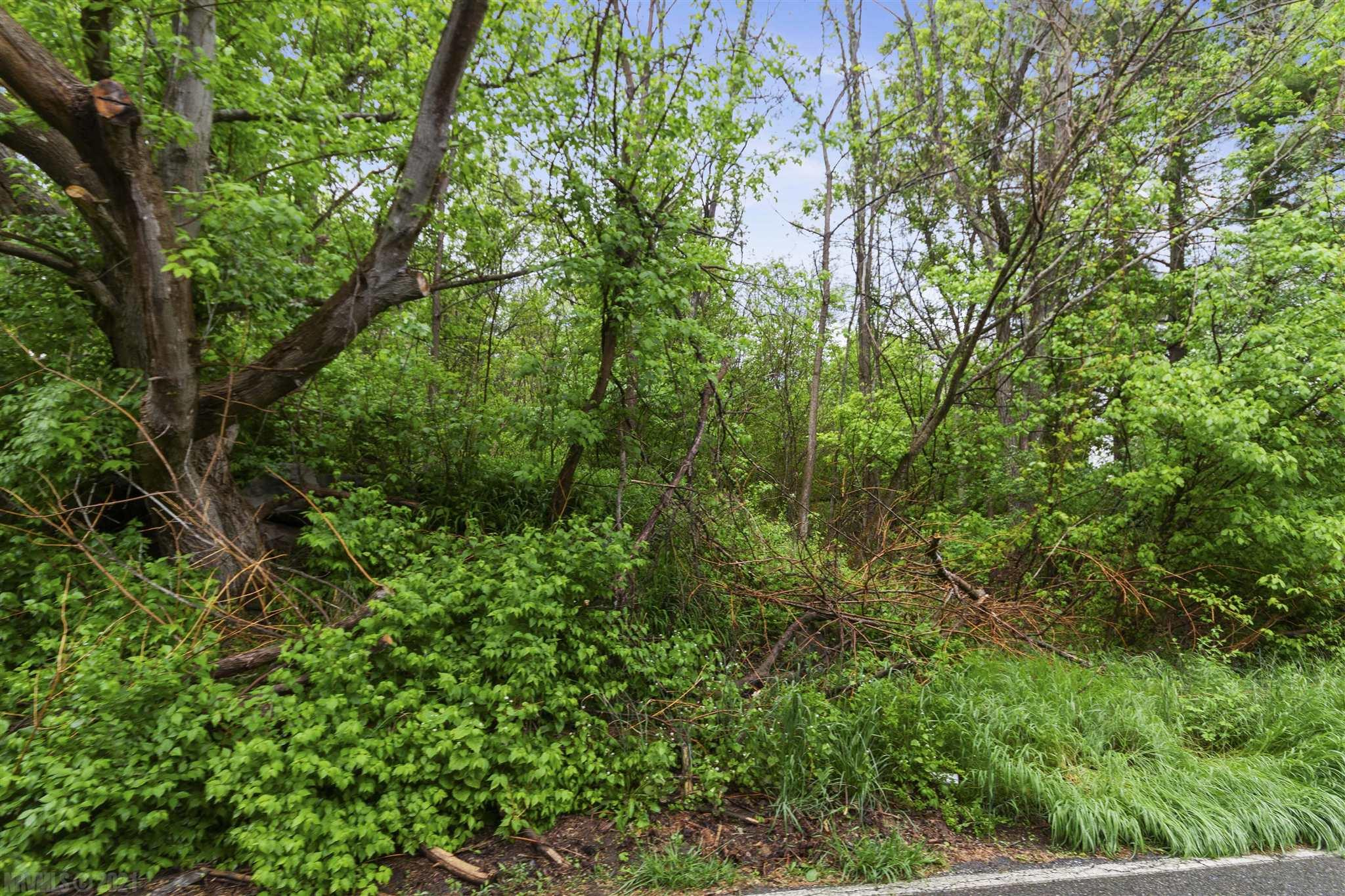 Wooded lot in Pulaski County close to I-81 and the surrounding areas in the NRV.  Priced below tax assessment.