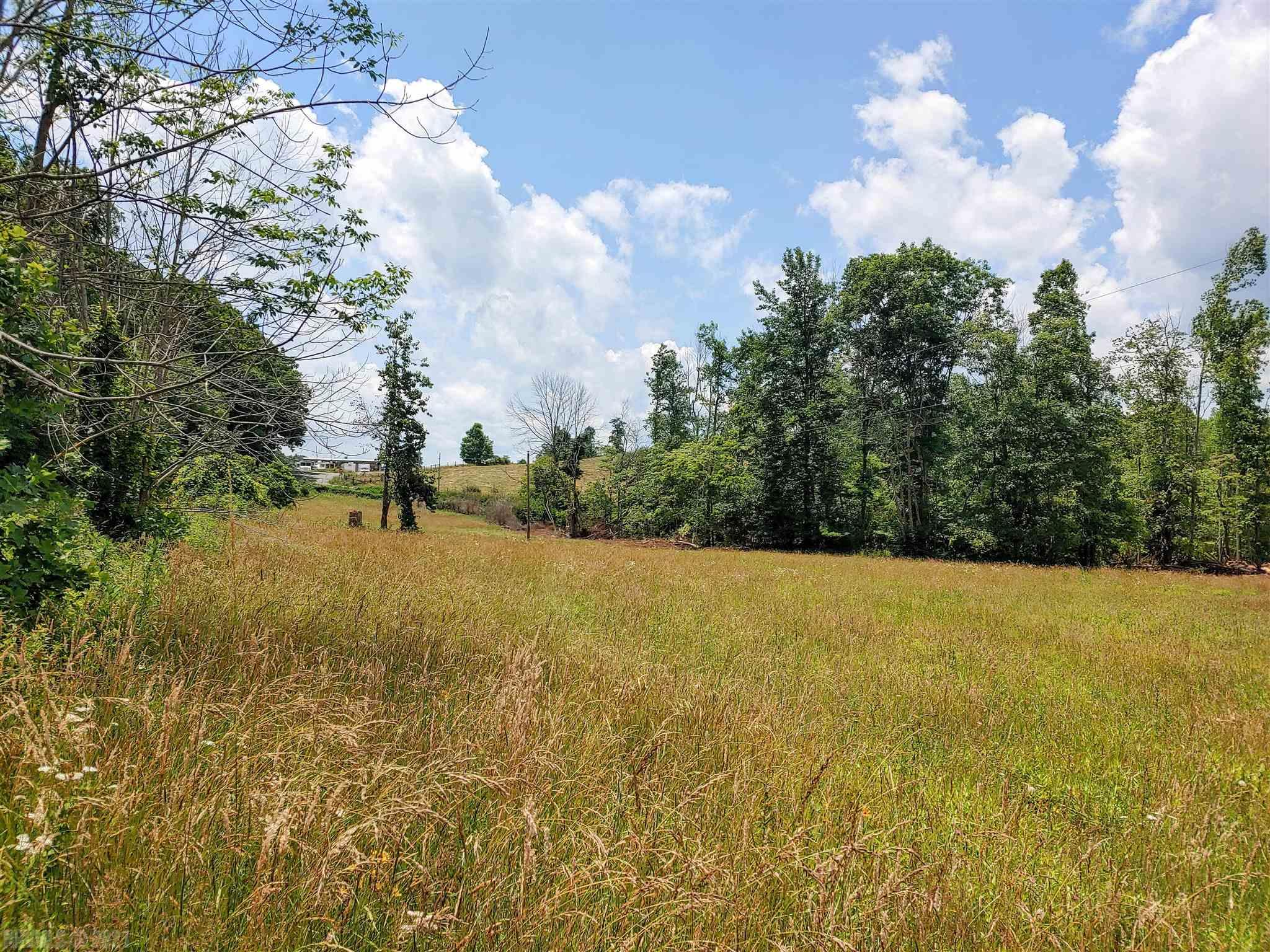 Beautiful property to build your home!  11.2 acres of rolling pasture with patches of wooded areas.  Property has roadways already created from timber retrieval.   Mature poplars were harvested recently and has now made for excellent home sites.  Unrestricted land!  Electric utilities are close by and accessible, good amount of state maintained road frontage.  Close to the Blue Ridge Parkway, Mabry Mill and Meadows of Dan.  Only 20 minutes to the Town of Floyd!