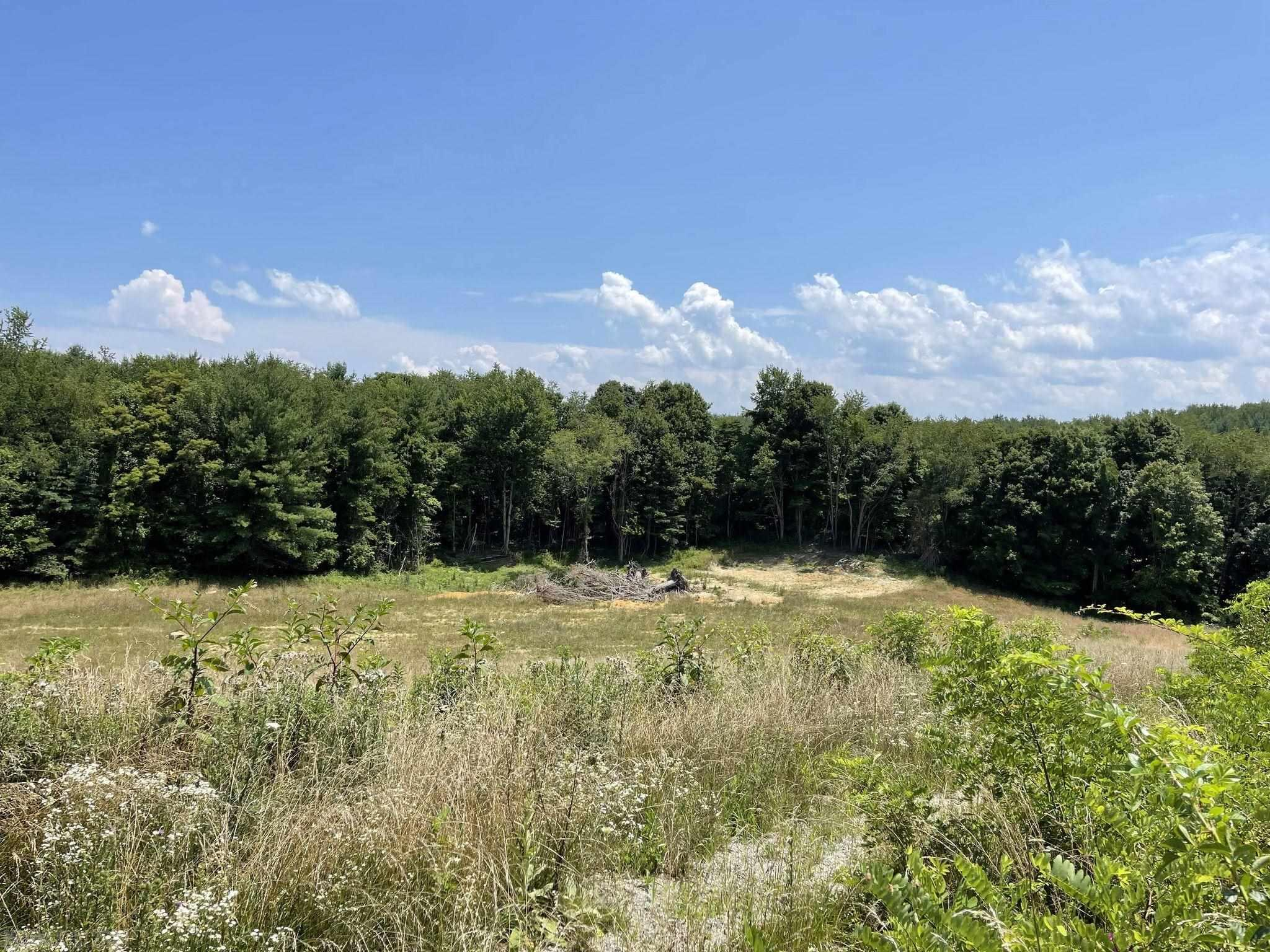 Great Location, Lots of Opportunities. Property has recently had some Grading work done. Would make a great spot to build a forever home and enjoy the scenic historic drive on Wilderness road everyday. Easy and quick access to I-81.